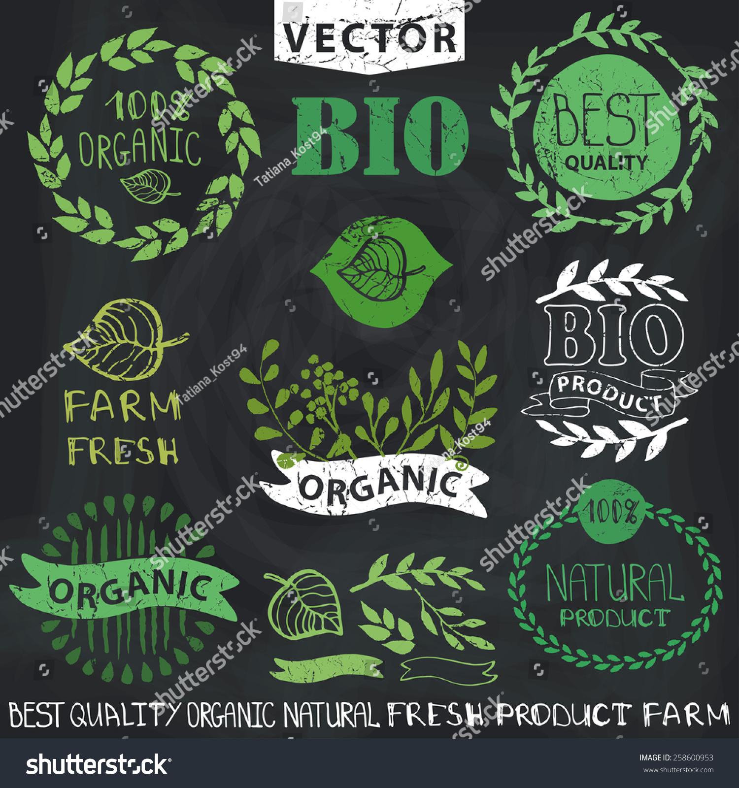 Organicbionatural Logotype Design Template Badgeslabelslogofloral ...