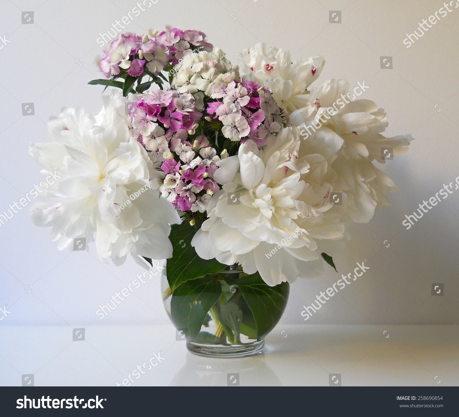 Royalty Free Bouquet Of Peonies And Carnations 258690854 Stock