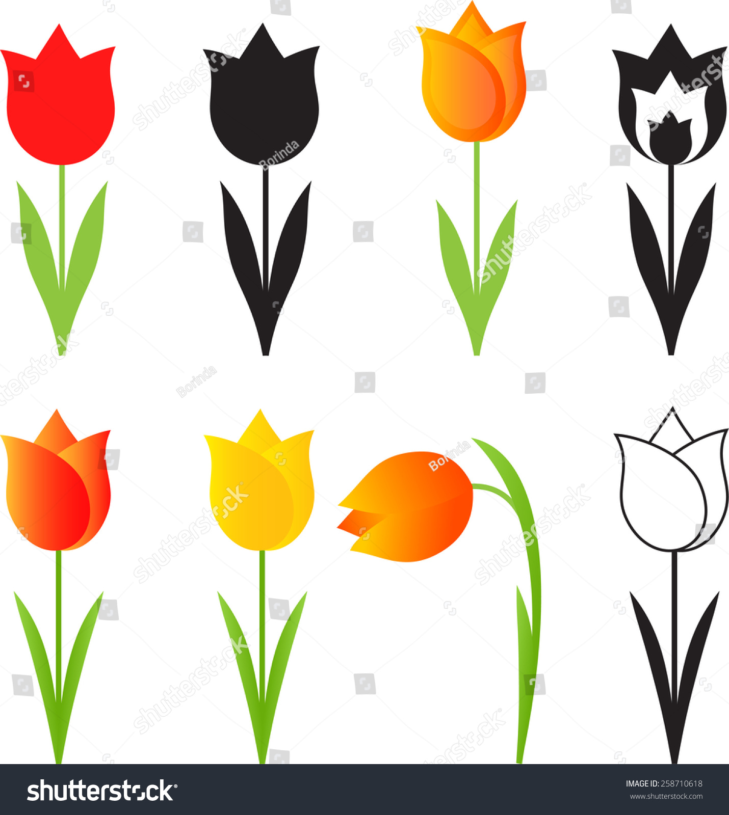 Isolated Spring Flowers Vectors Tulip Vectors Stock Vector Royalty
