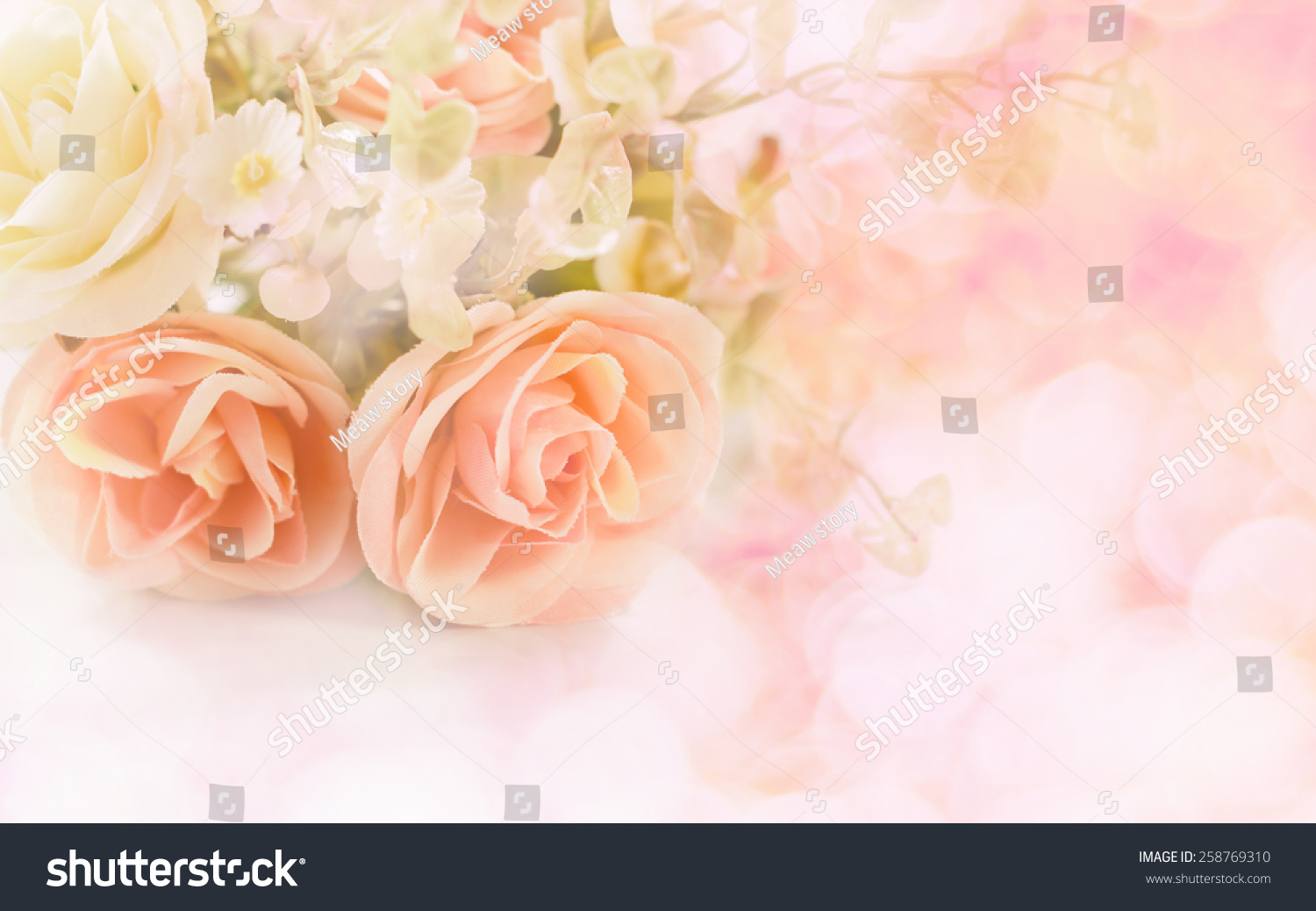 Blurry Sweet Color Roses Bokeh Texture Stock Photo Edit Now Vintage Story English Rose Flower Pink Of In Soft Blur For Background With Pastel Retro