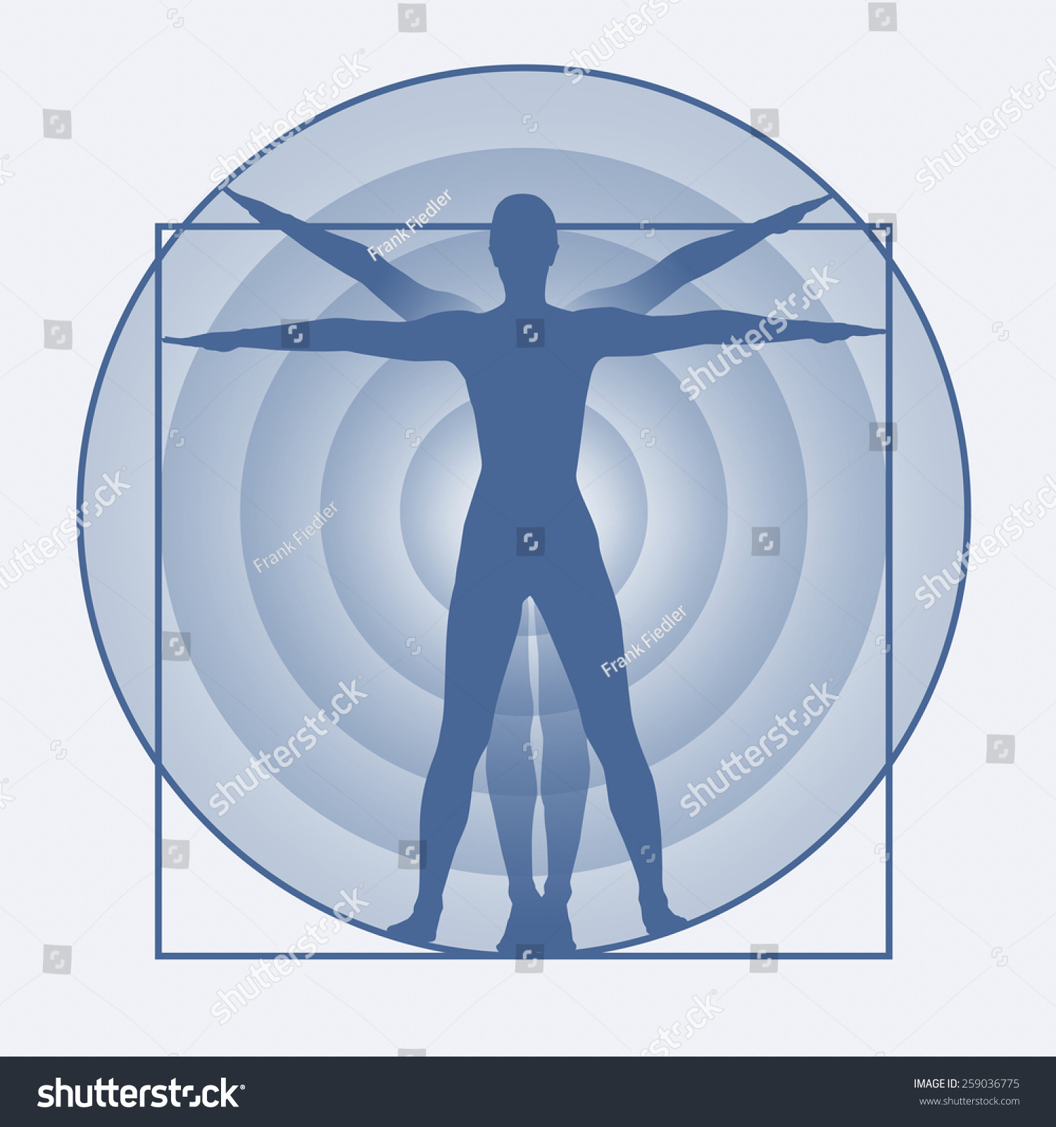 Study Human Body Proportions Stock Illustration Royalty Free Stock
