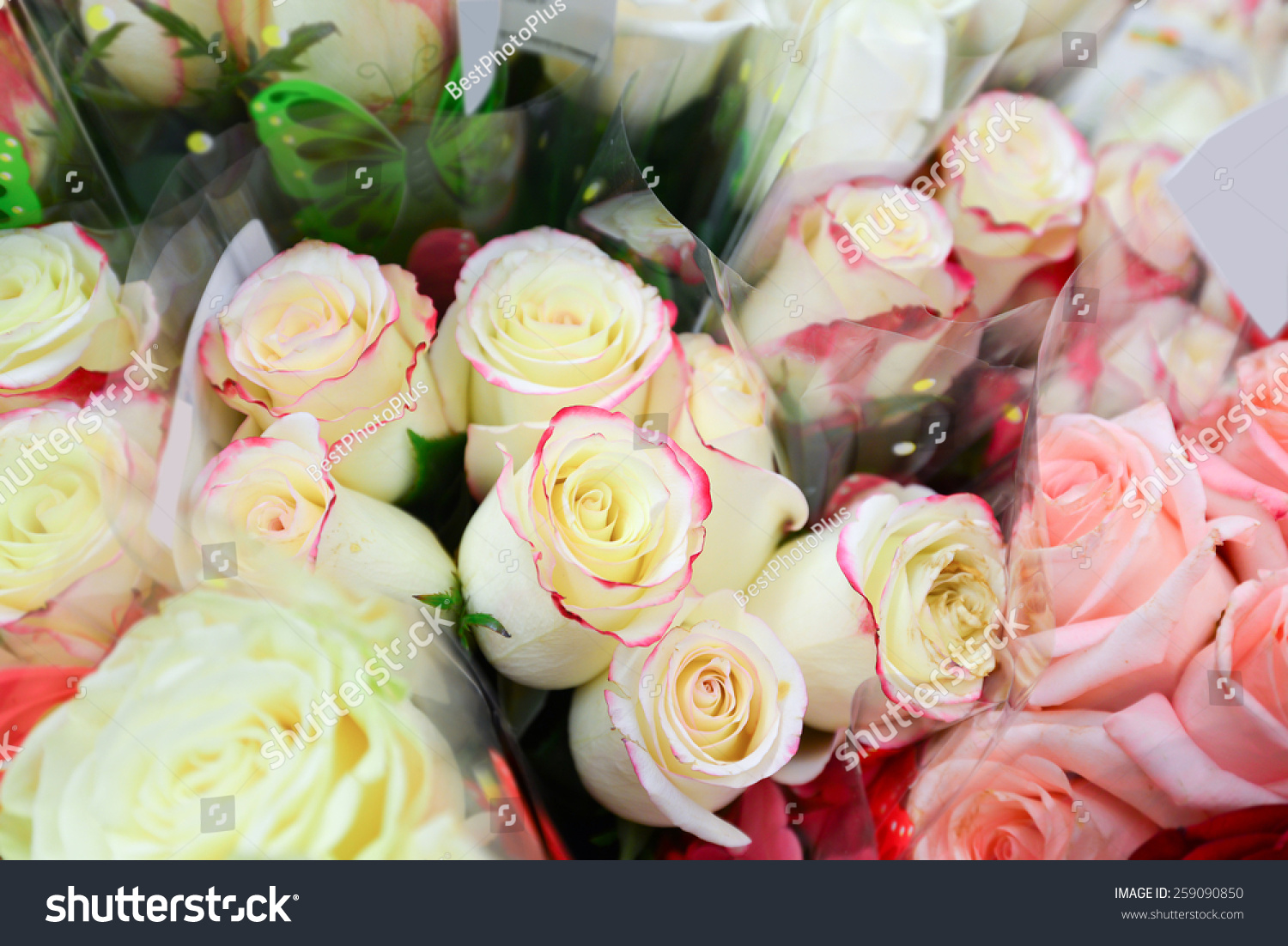 Flower bouquet different flowers stock photo 259090850 shutterstock a flower bouquet with a lot of a different flowers izmirmasajfo