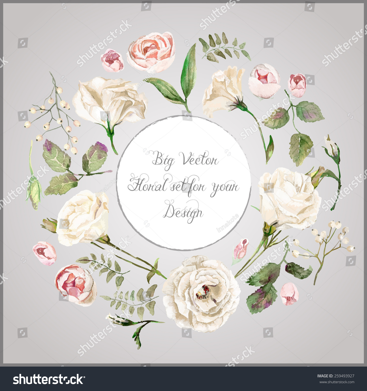 Vector Set Different White Beige Flowers Stock Vector Royalty Free