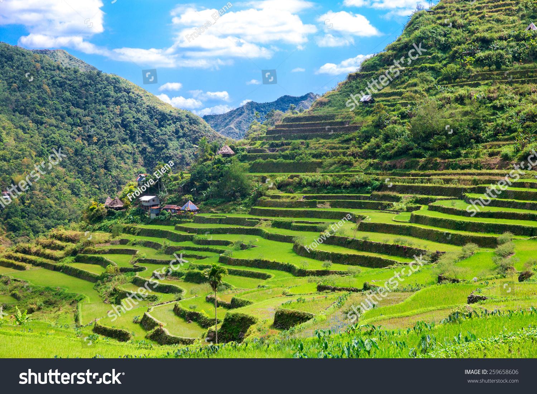 Foto De Stock Sobre Terrazas De Arroz En Filipinas El