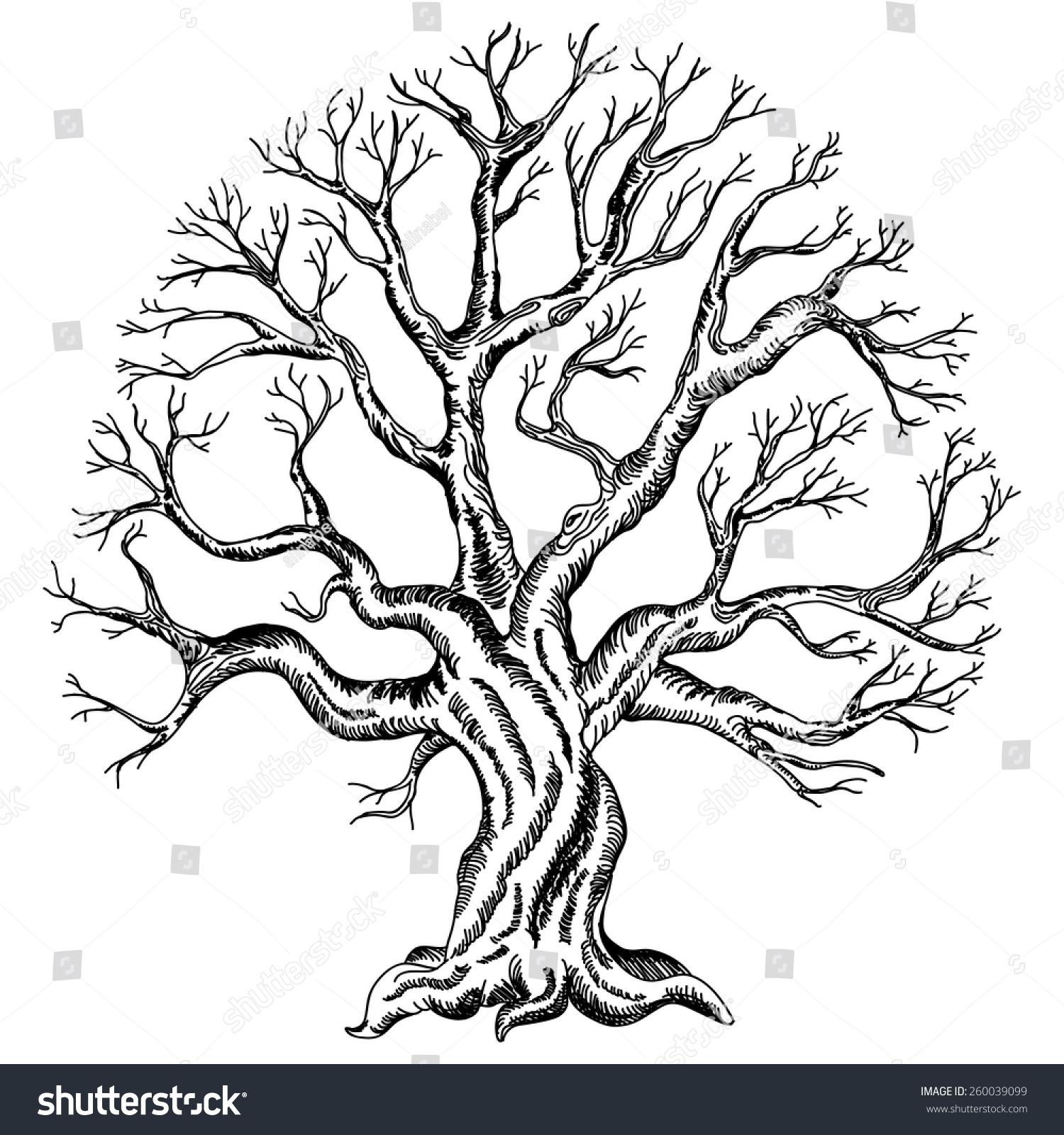 Wedding Tree Vector: Vector Illustration Tree Silhouette Variant Design Stock