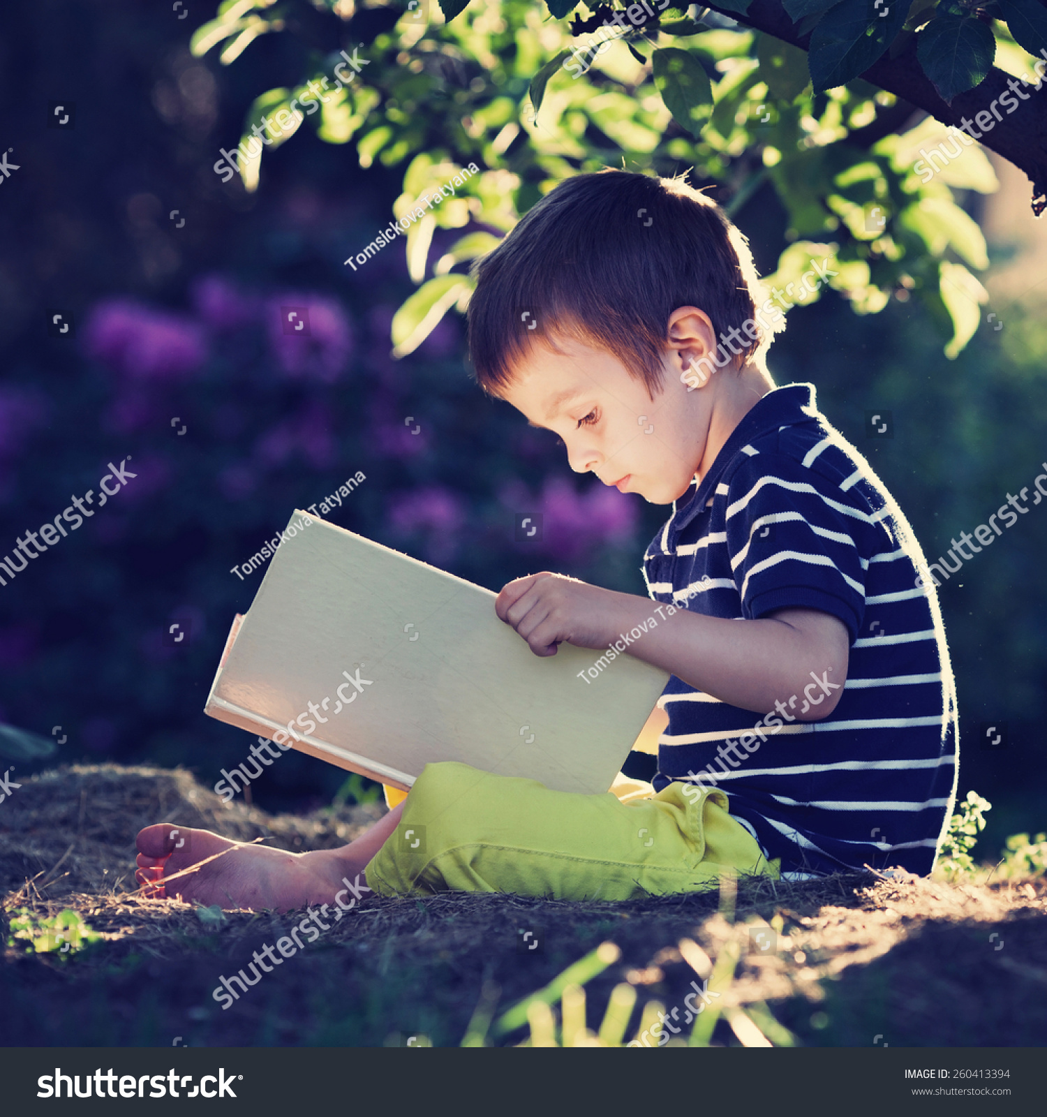 beautiful kid boy reading book garden stock photo