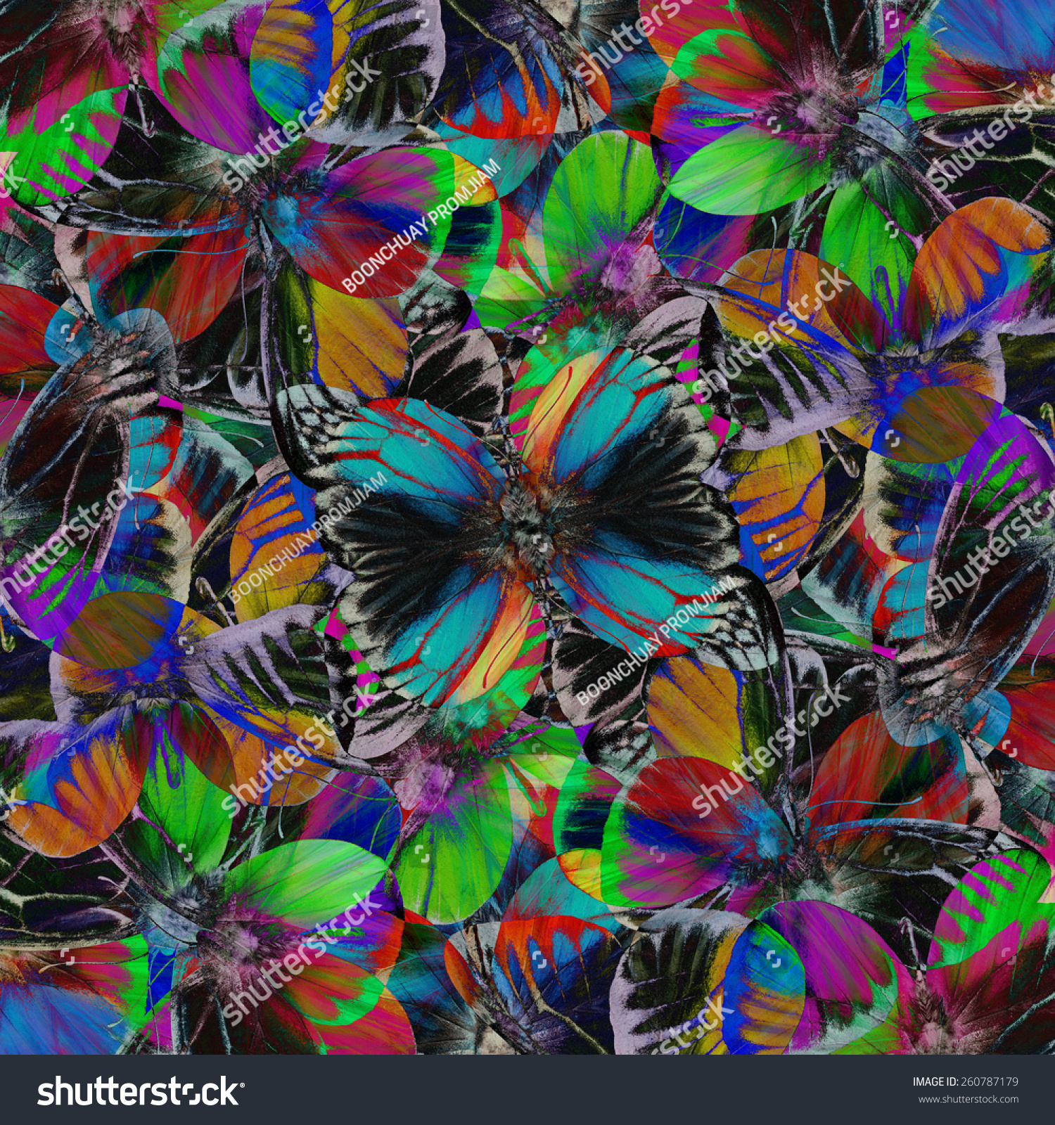 Butterfly Beautiful Pattern Abstract Background Texture