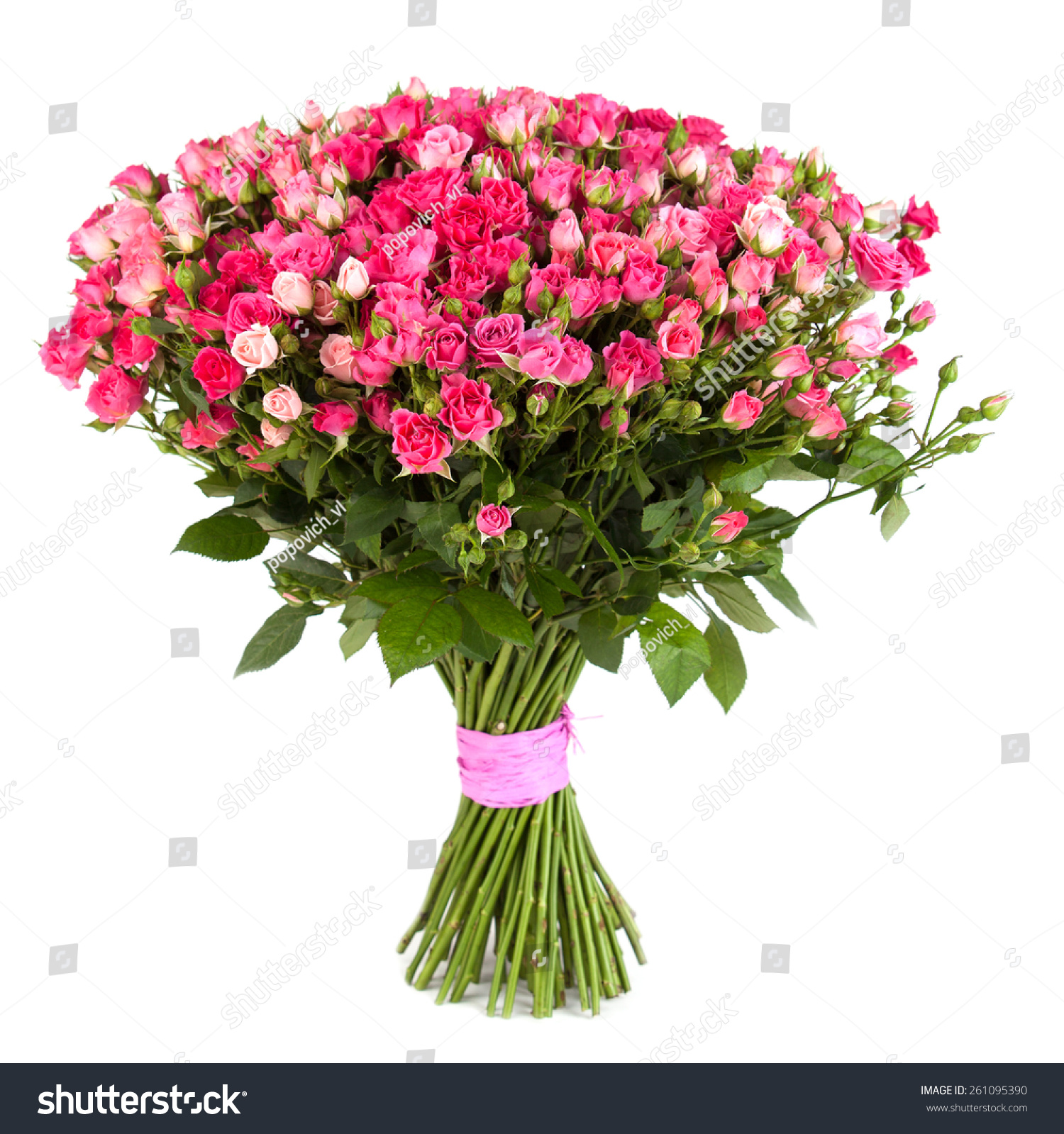 Big flower bouquet pink roses isolated stock photo edit now big flower bouquet from pink roses isolated on white background closeup izmirmasajfo