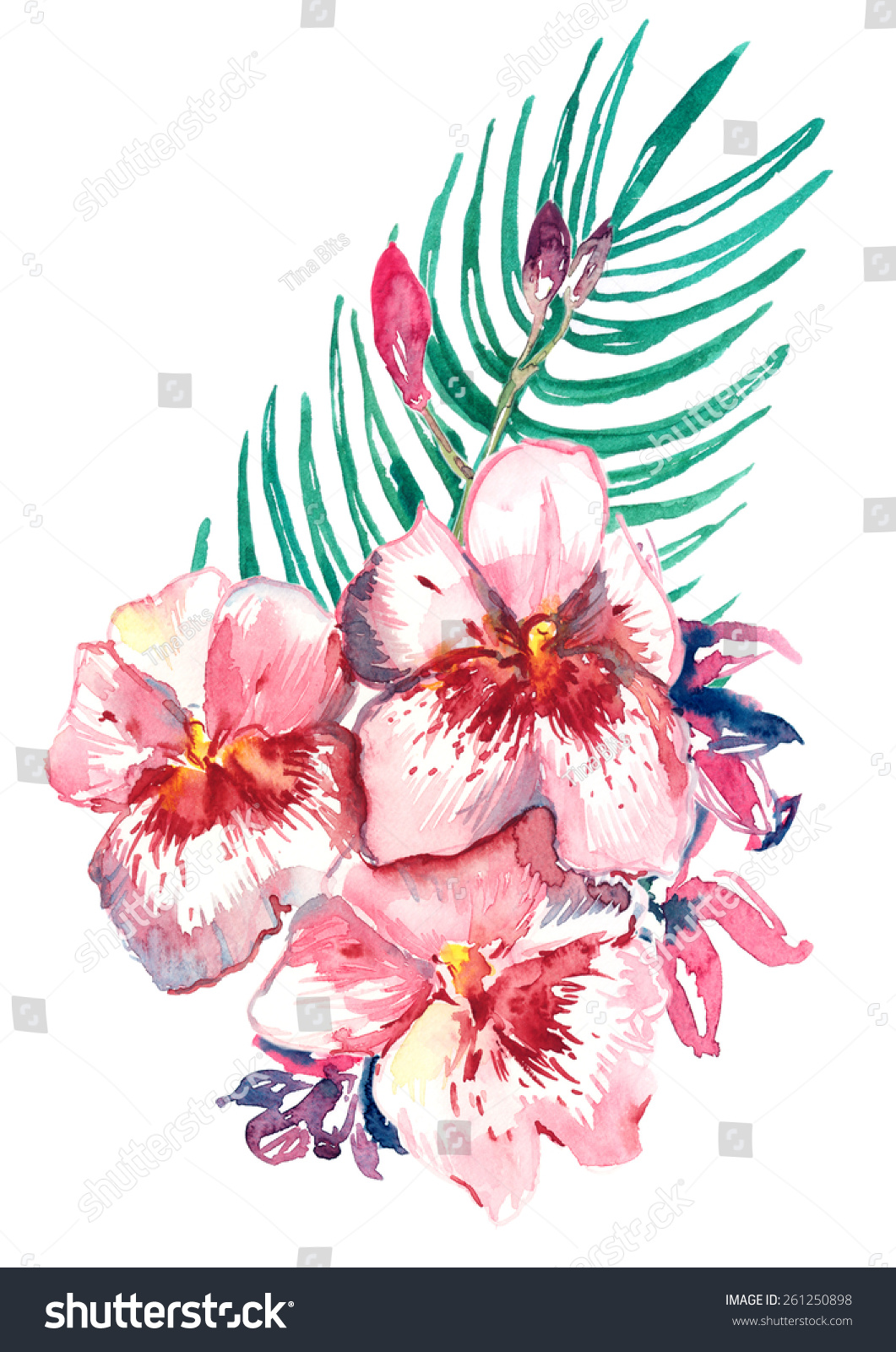 Royalty Free Bunch Of Pink And Purple Flowers And 261250898 Stock