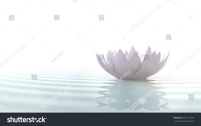 Zen Lotus Flower In Water Illuminated By Daylight On White Background