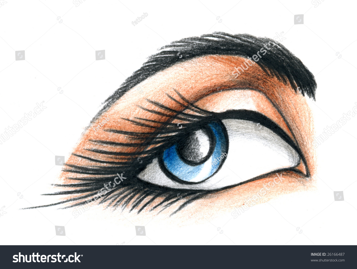 Color Pencil Illustration Of A Blue Eye With Brow And Long ...