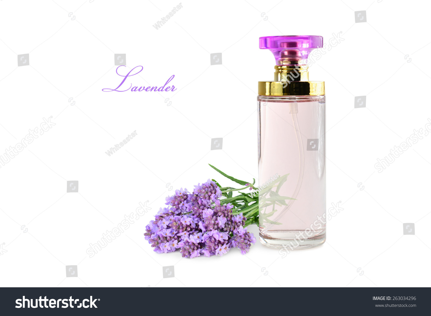 Woman Perfume In Beautiful Bottle And Lavender Flowers Isolated On