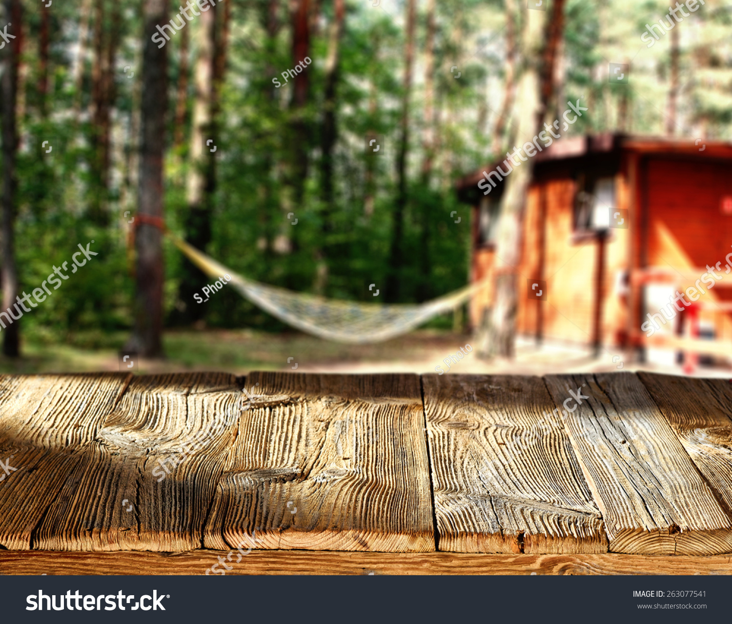 Sunny Days Backyard Camp : Sunny Day And Camping Stock Photo 263077541  Shutterstock