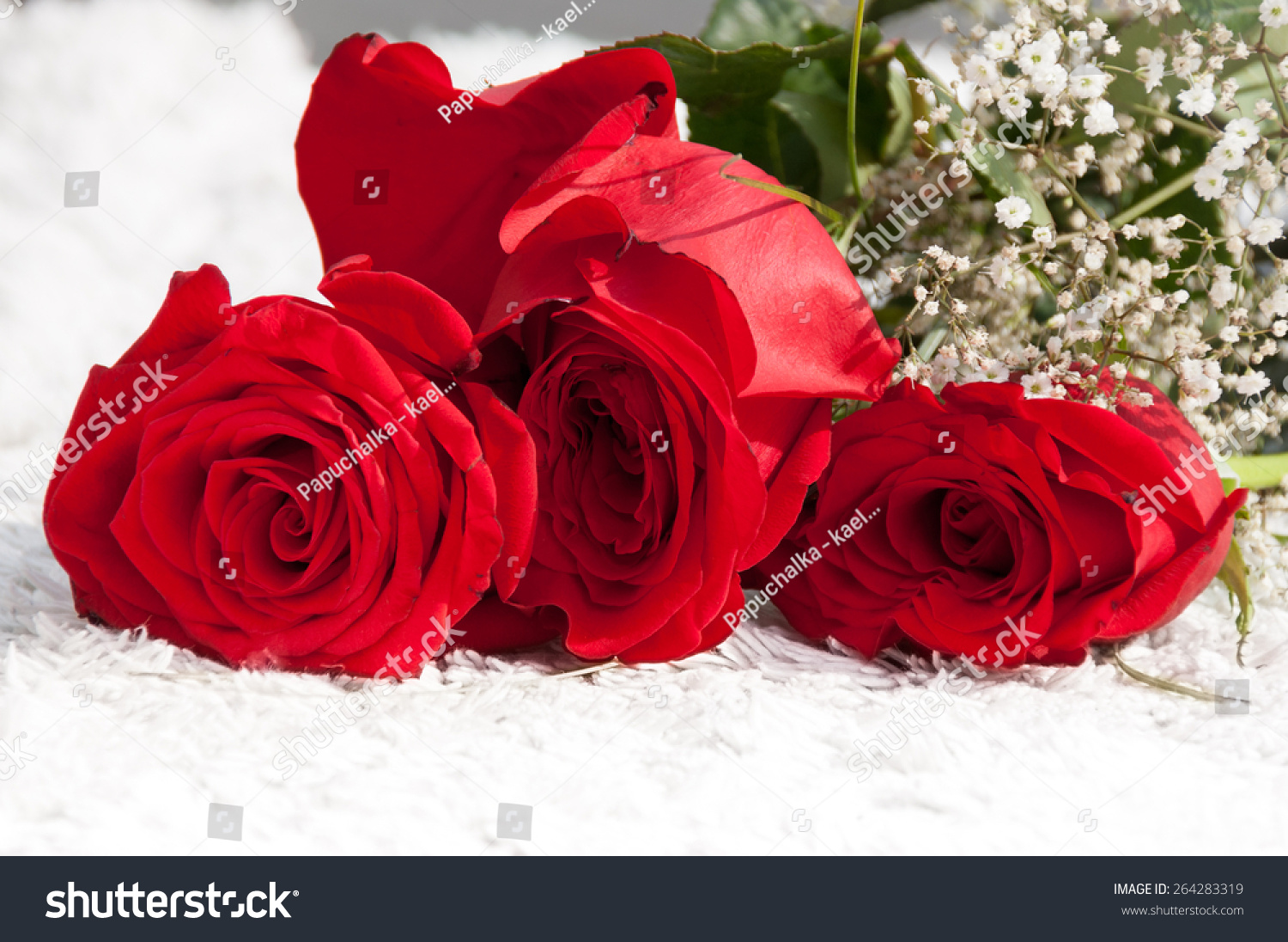 Bunch Red Roses Little White Flowers Stock Photo (Royalty Free ...