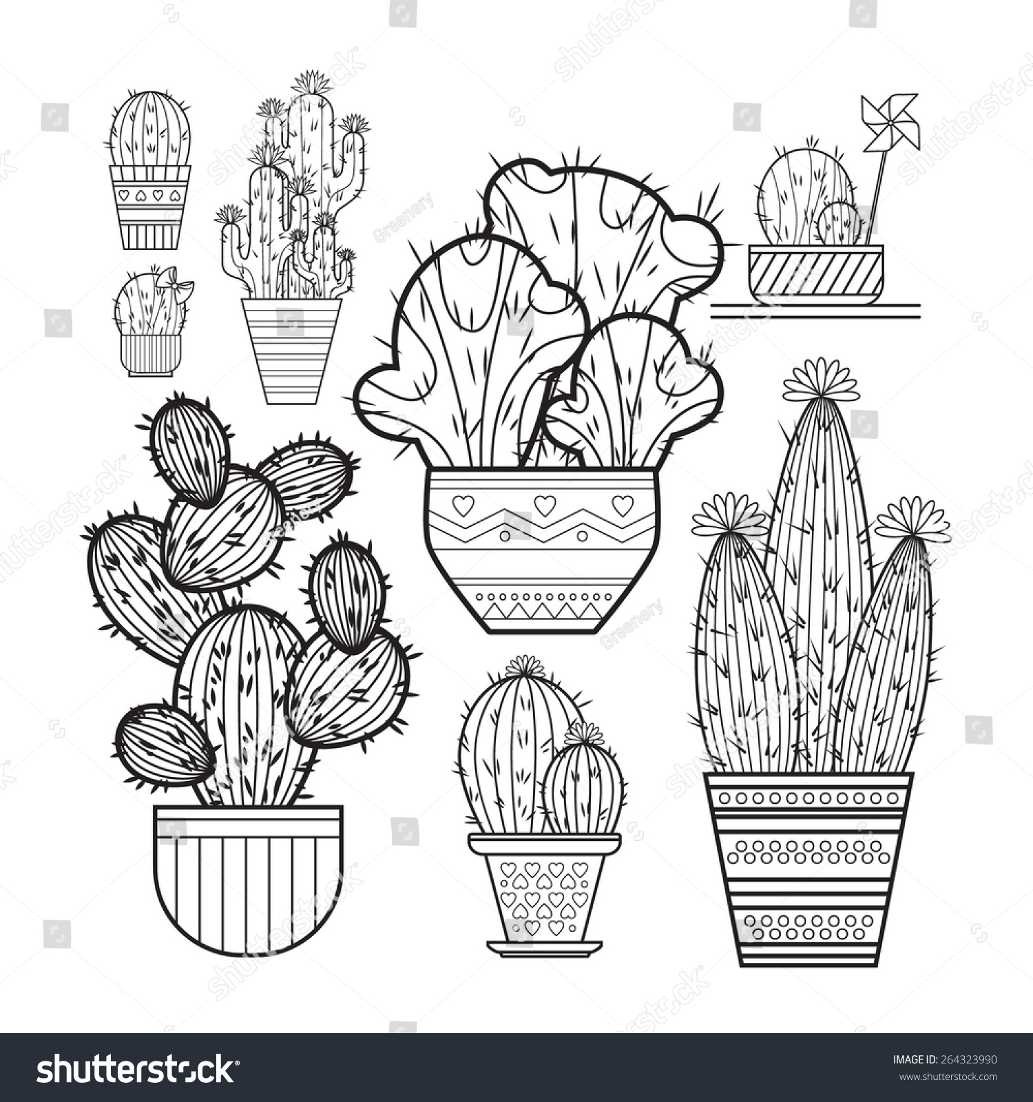 Line Drawing Cactus : A set of cacti line drawing vector illustration