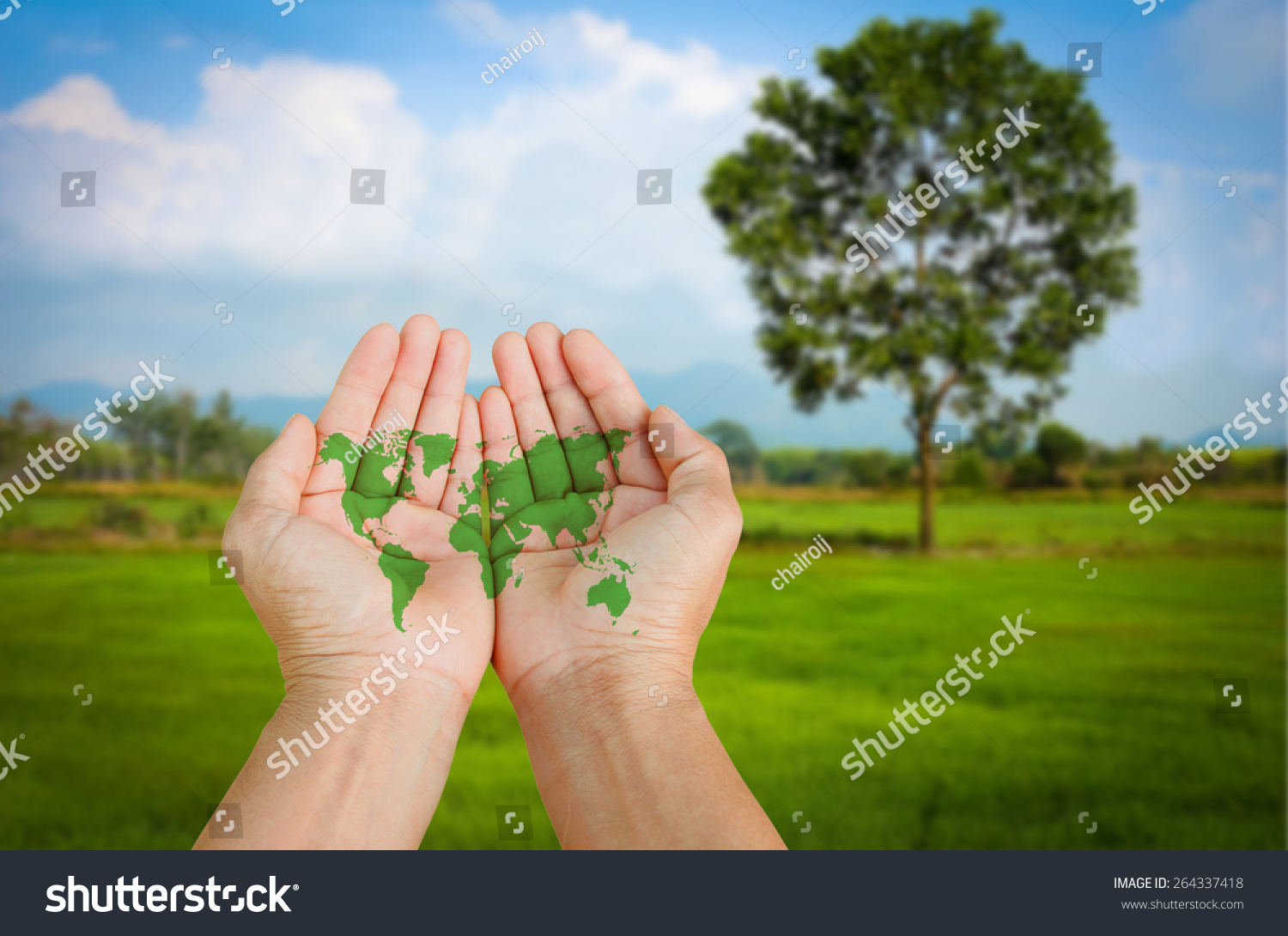 World map hand on green field stock photo royalty free 264337418 world map in hand on green field natural background gumiabroncs Image collections