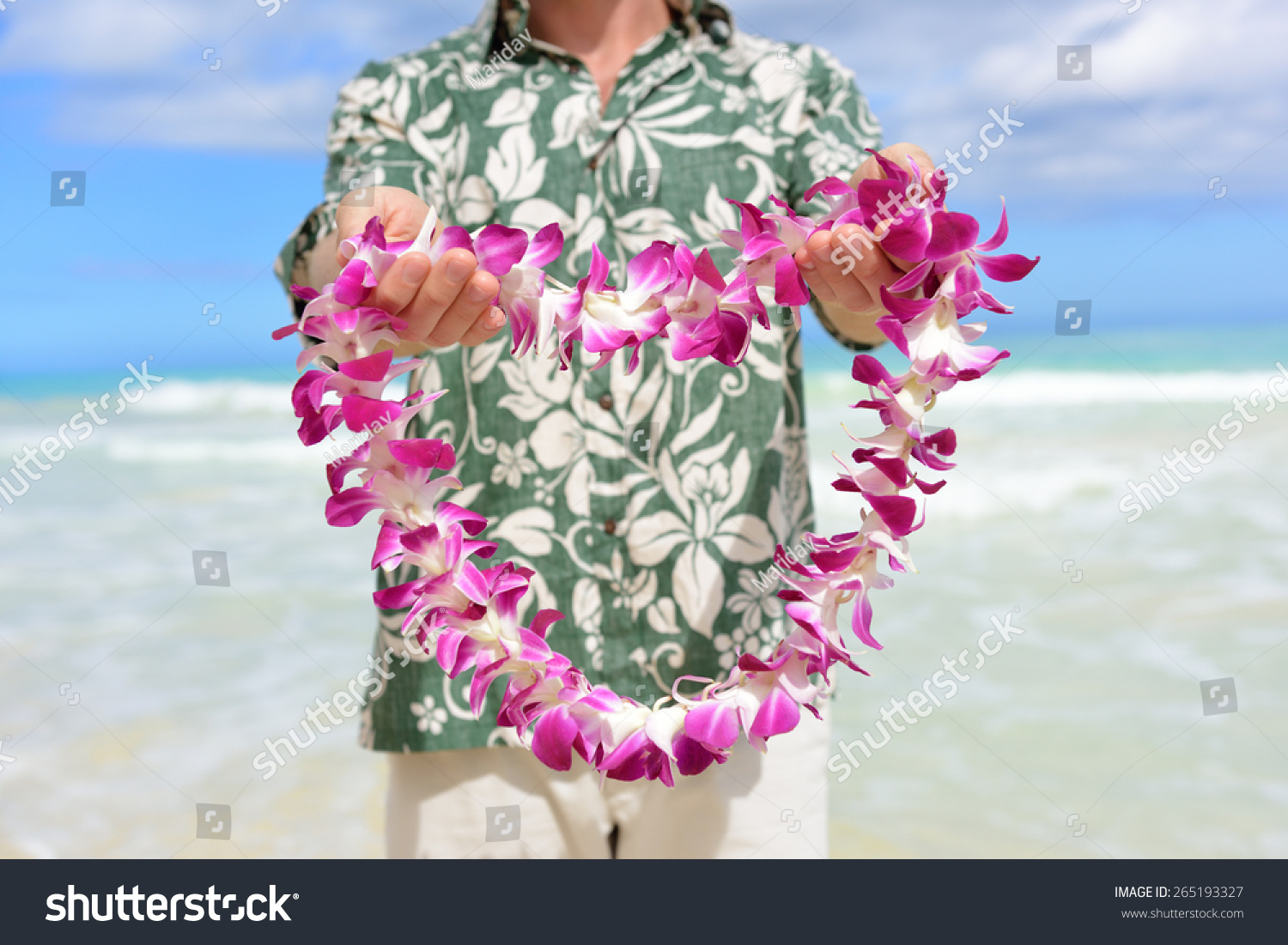 Hawaii tradition giving hawaiian flowers lei stock photo royalty hawaii tradition giving a hawaiian flowers lei portrait of a male person holding a izmirmasajfo