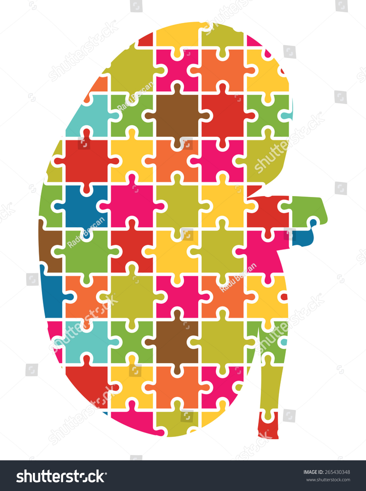 kidney jigsaw puzzle pieces abstract stock vector 265430348