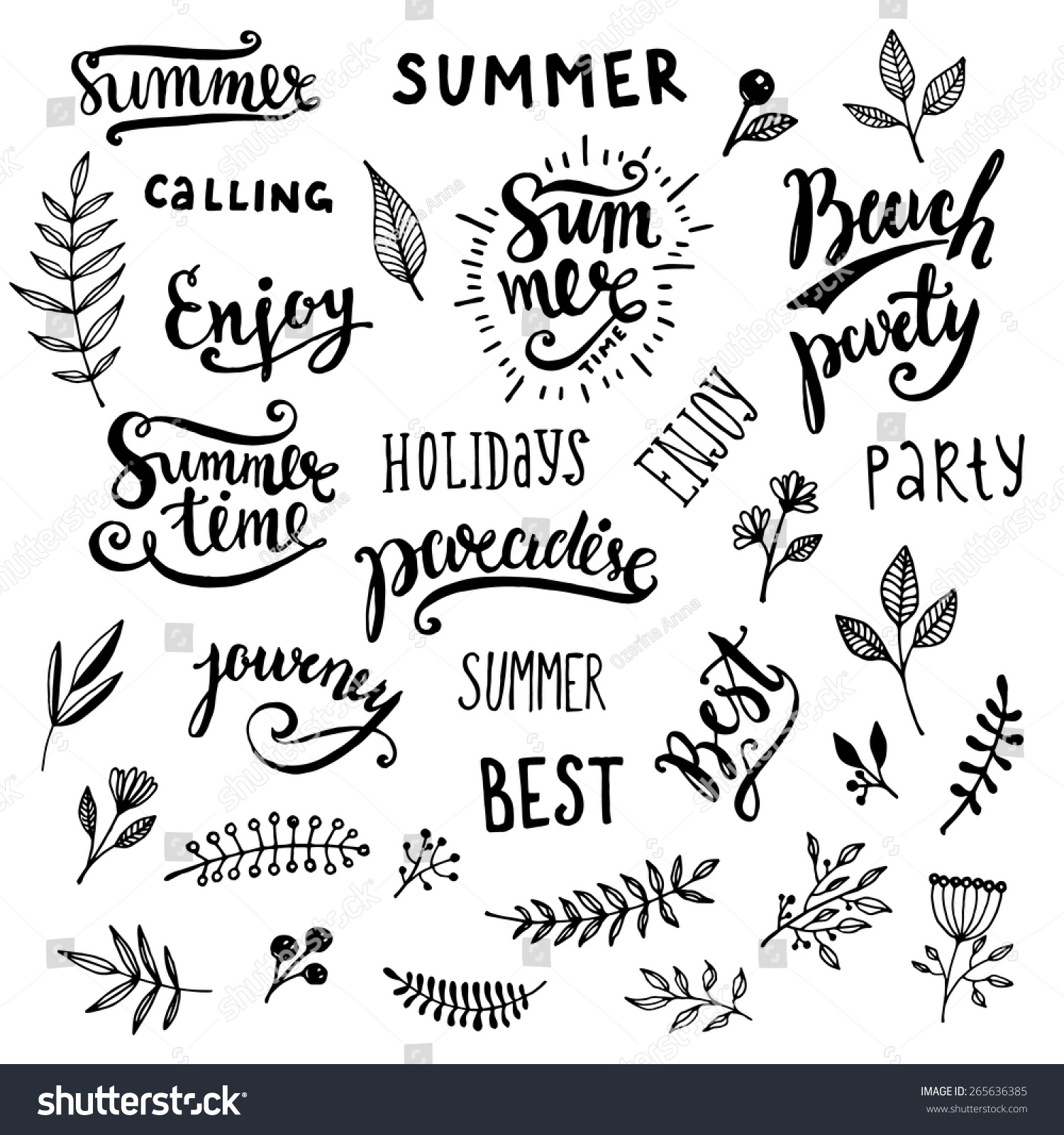 Summer calligraphic designs set flowers floral stock