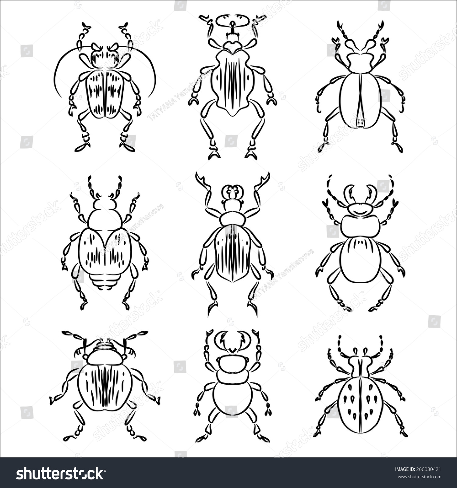 beetles insects black contour drawing stock vector 266080421
