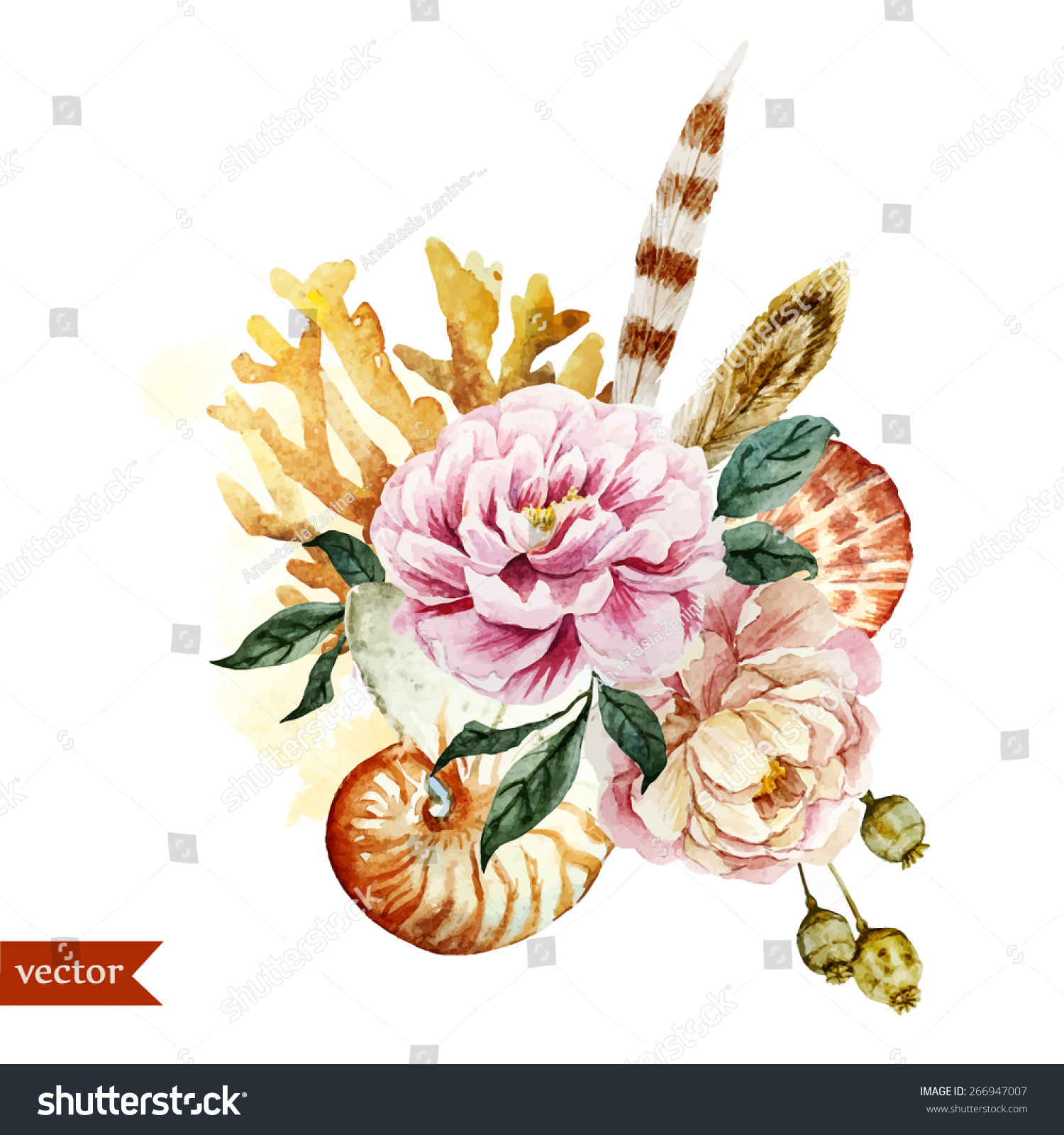 Watercolor Vintage Object Flowers Sea Shells Stock Vector Royalty