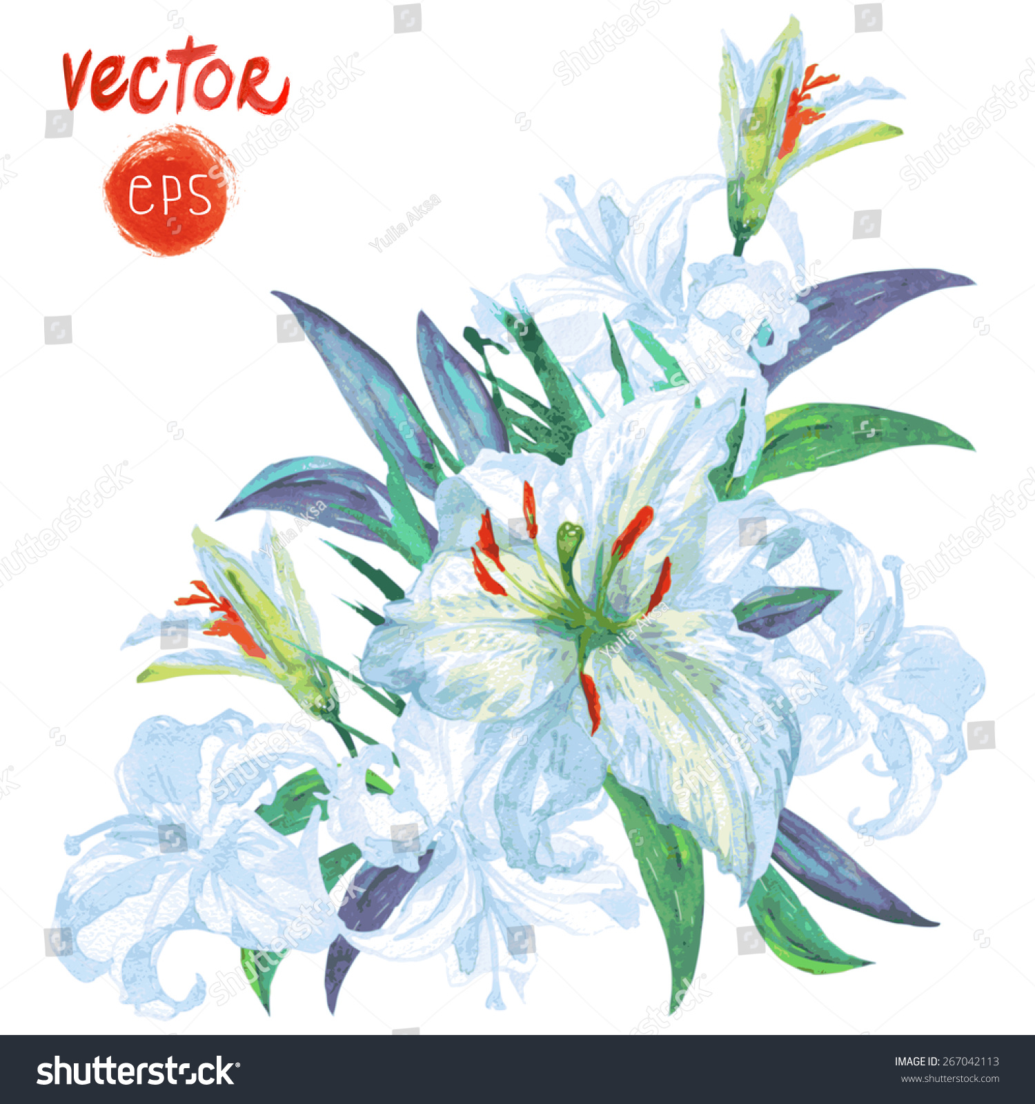 Vector flower white lily watercolor painting stock vector royalty vector flower white lily watercolor painting bunch of white flowers lilies with leaves leaf izmirmasajfo