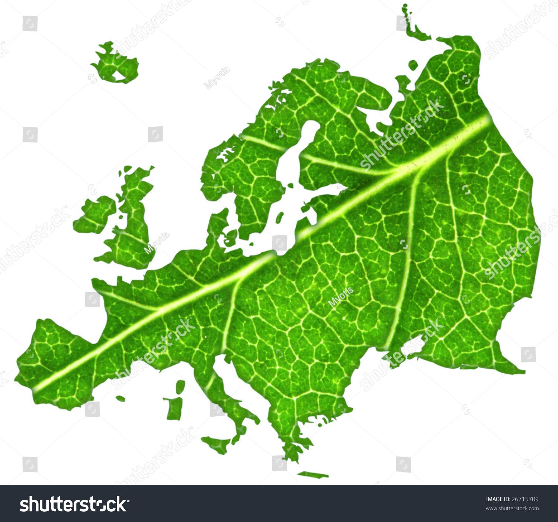 macro green leaf cut out shape stock photo 26715709 shutterstock