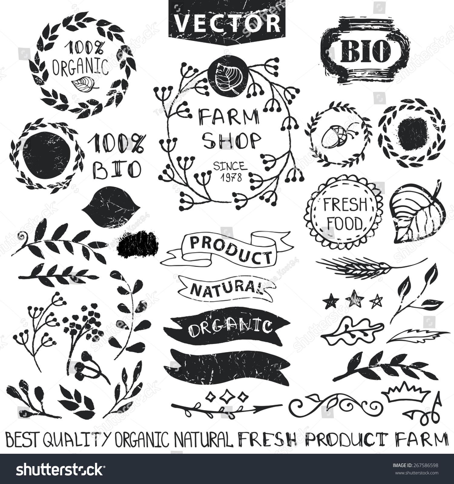 Set Badgeslabelslogofloral Elementswreaths Laurels Organicbionatural ...