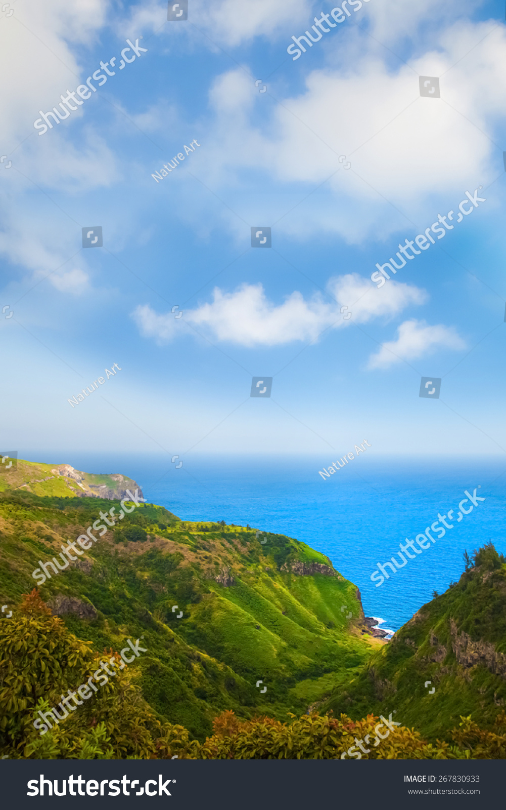 Mountain landscape with pacific ocean in the background, island Maui, Hawaii. Composition of natural background, bright green grass and blue sky with clouds #267830933