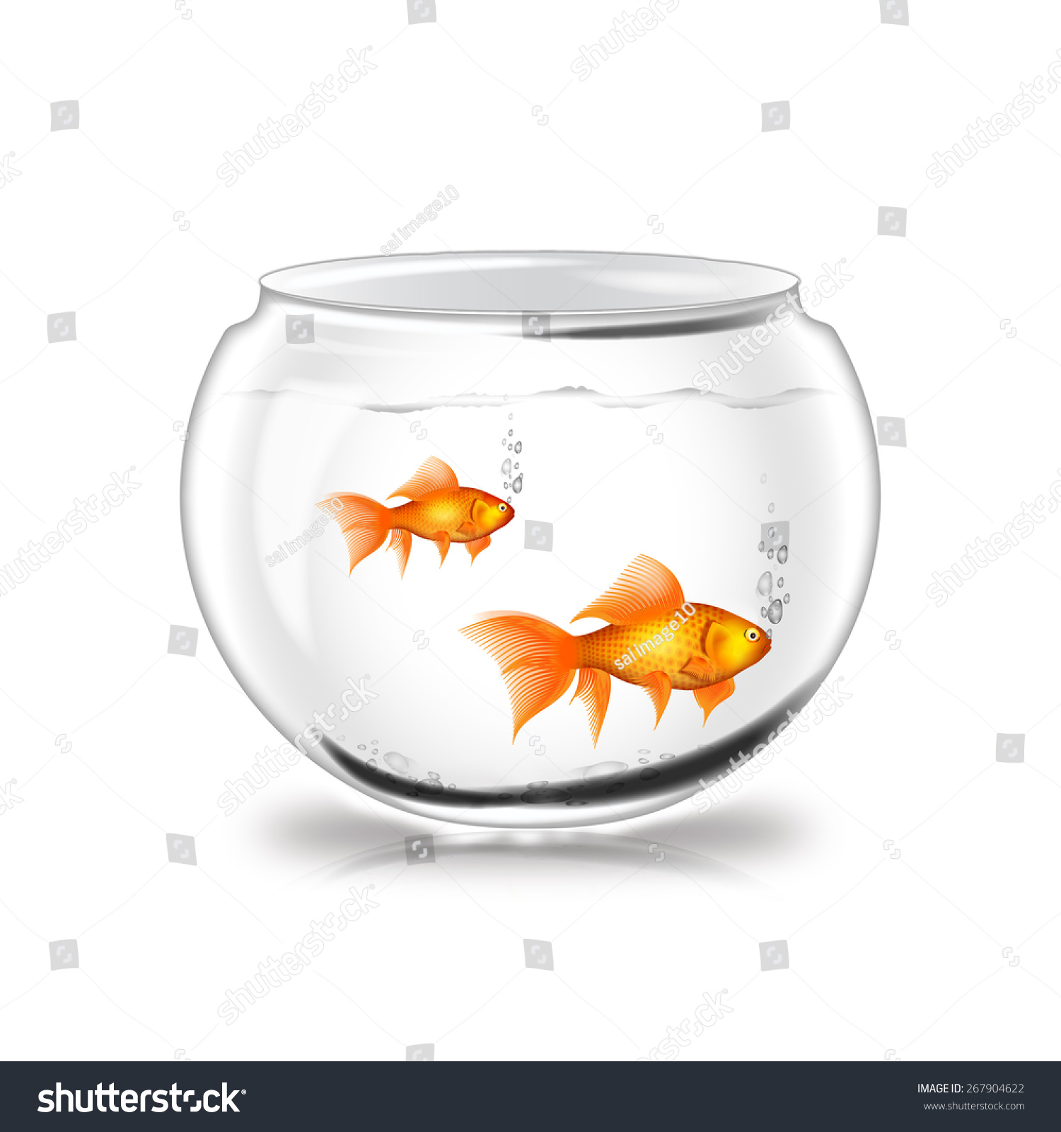 White Color Glass Fish Pot Water Stock Illustration 267904622