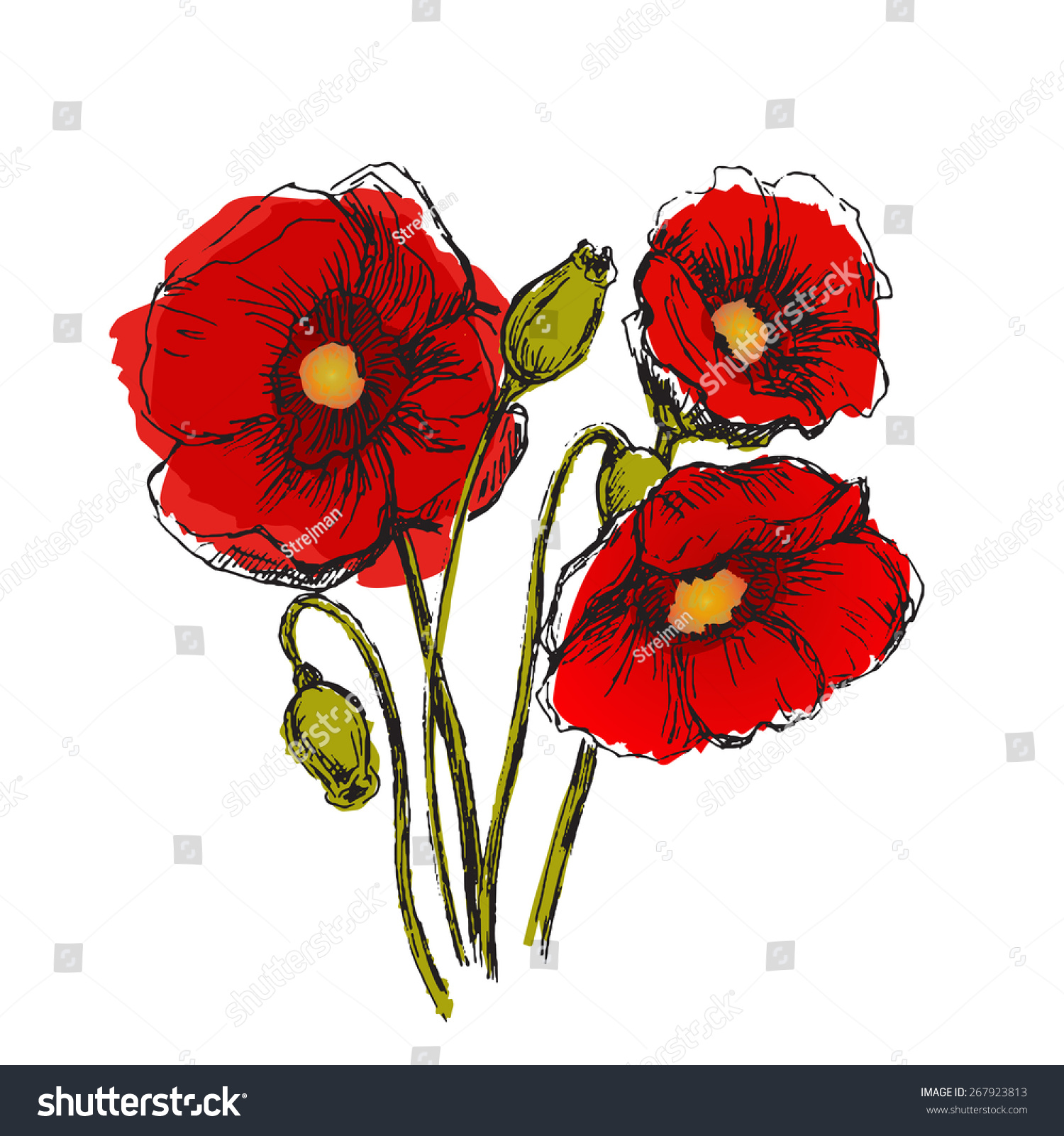 Flowers Set Color Sketch Converted Vectors Stock Vector 267923813 ...