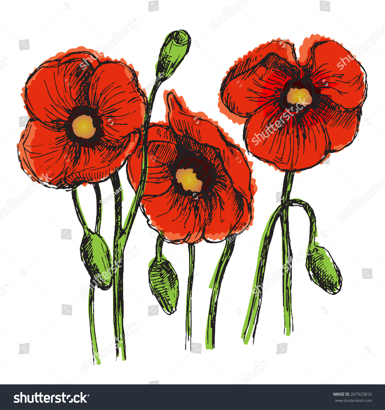 Flowers Set Color Sketch Converted Vectors Stock Vector 267923816 ...