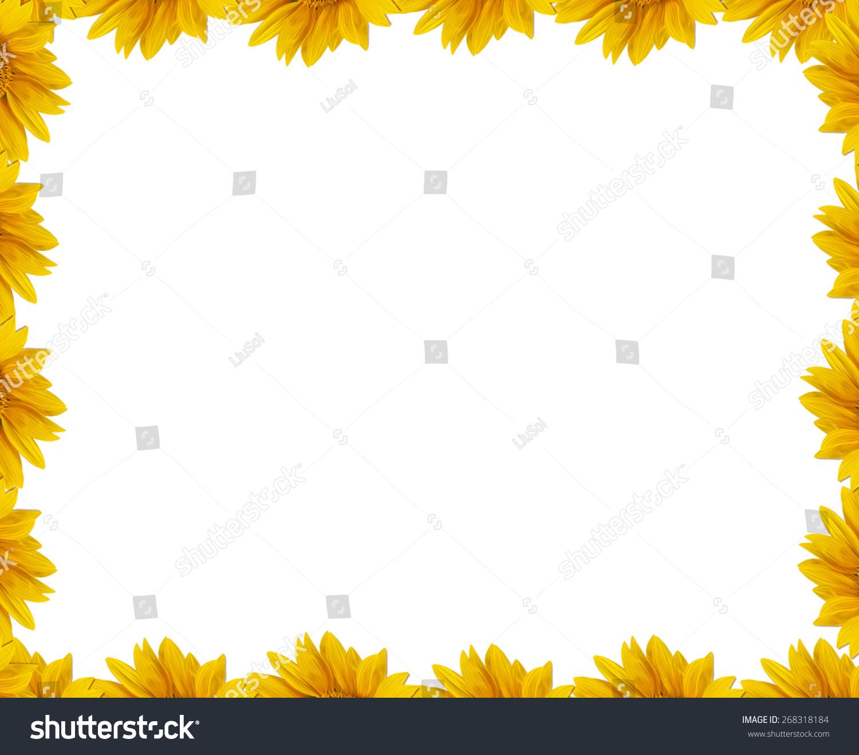 Summer Frame For Greeting Card Flower Petals Of Sunflower Blank