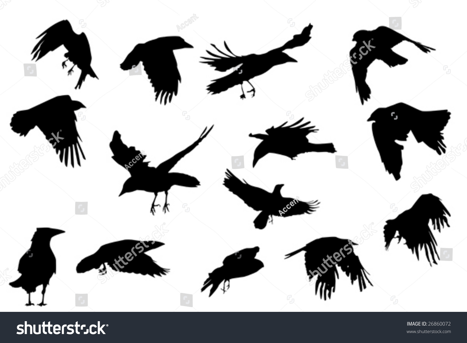 Crows In Flight Silhouette