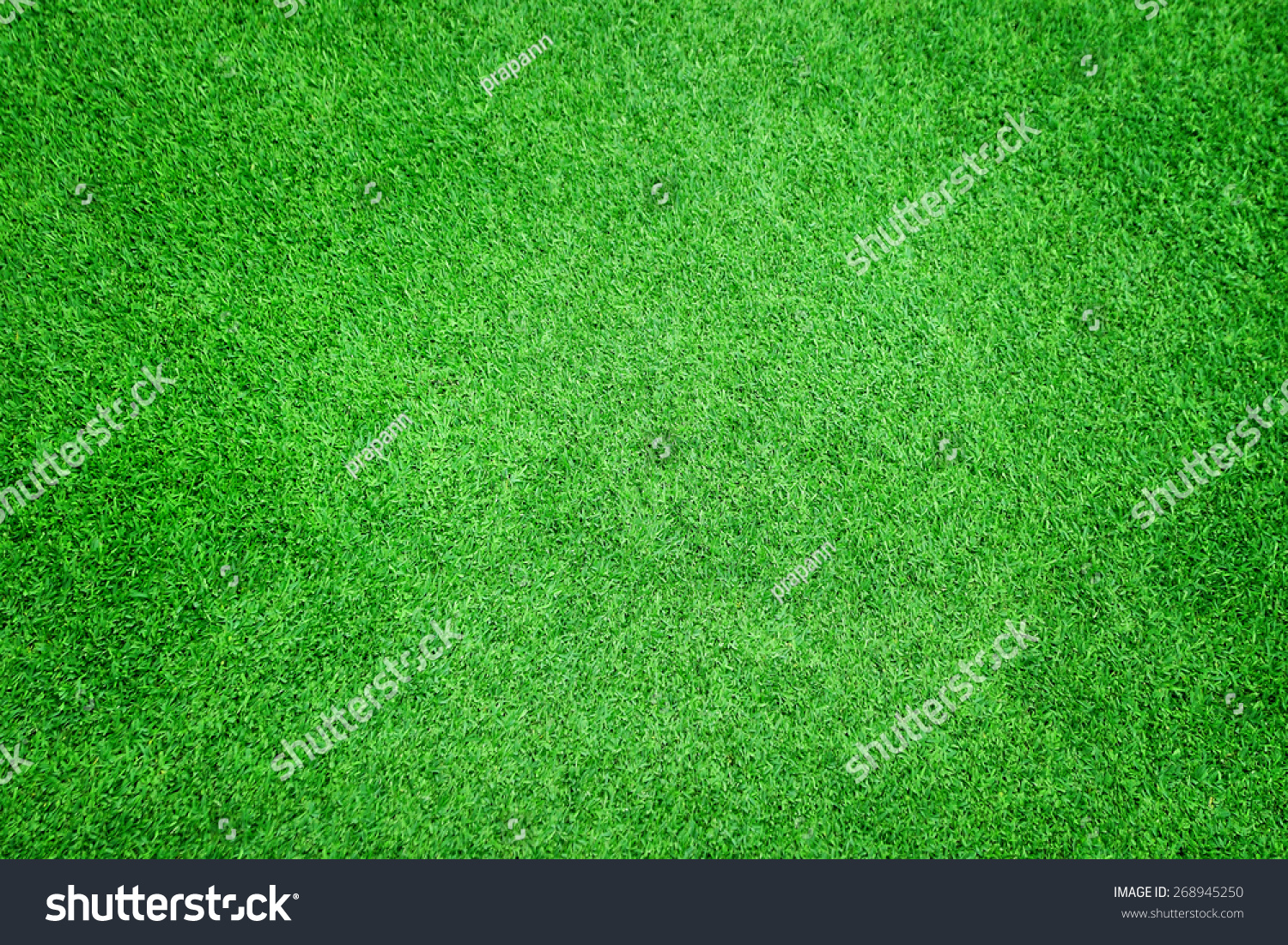 Beautiful green grass texture stock photo 268945250 for Pretty grass