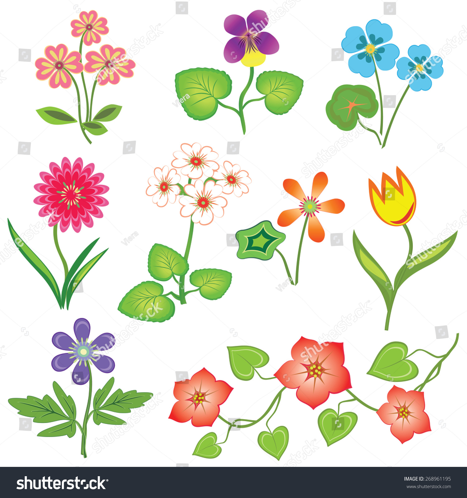 Royalty free nasturtium primula viola anemone 268961195 nasturtium primula viola anemone tulip gowan dog daisy petunia flower set spring flowers floral symbols with leaves color icons biocorpaavc