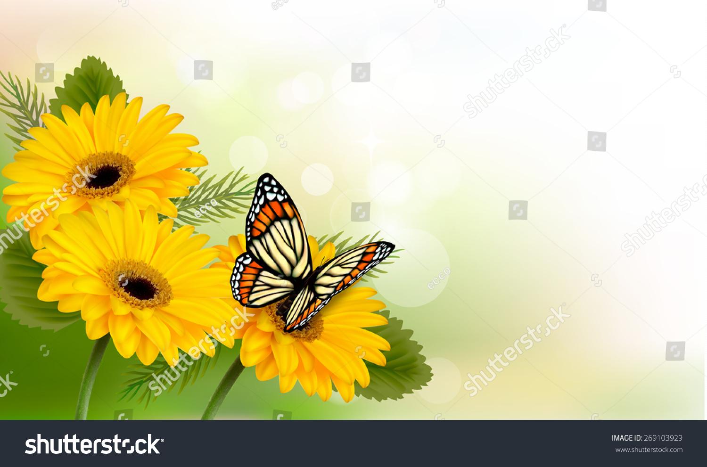 Summer background yellow beautiful flowers butterfly stock summer background with yellow beautiful flowers and butterfly izmirmasajfo