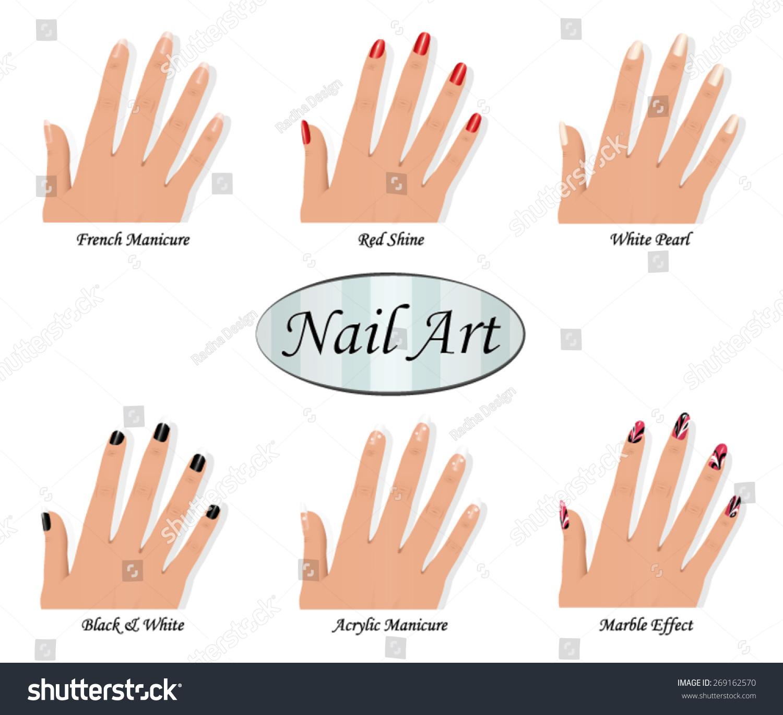 Nail Art Catalog Stock Vector Royalty Free 269162570 Shutterstock