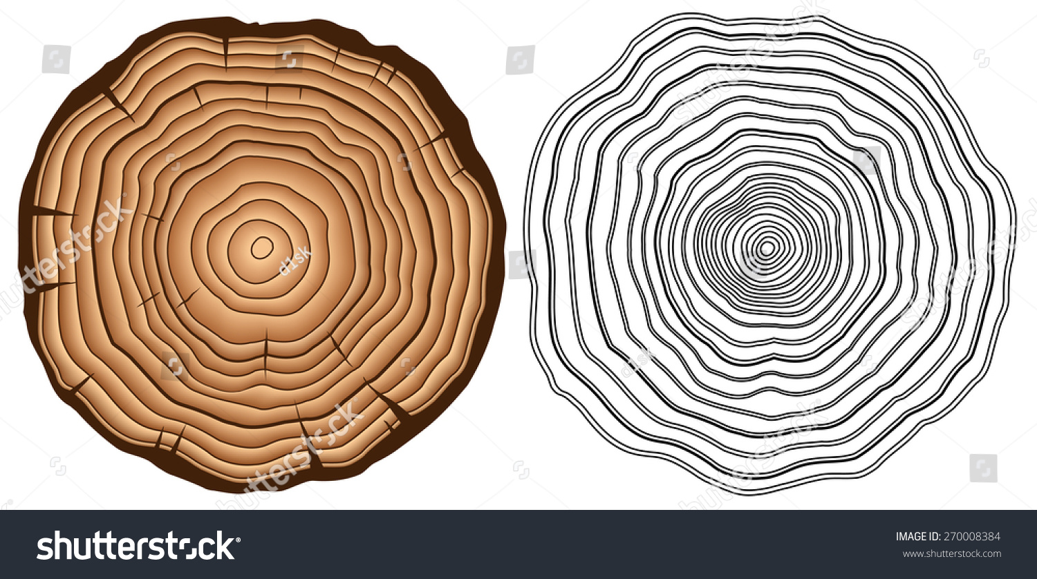 Conceptual Background With Tree-rings. Vector Graphics EPS10 ...