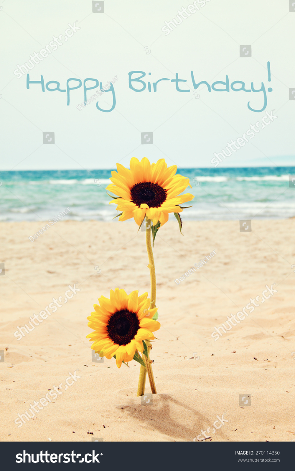 Greeting Card Background Sunflower Beach Happy Stock Photo Edit Now