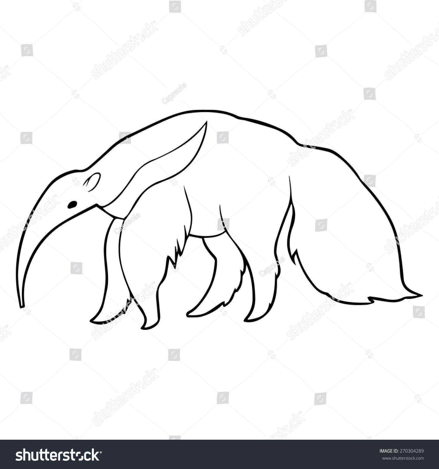 anteater outline illustration stock vector 270304289 shutterstock