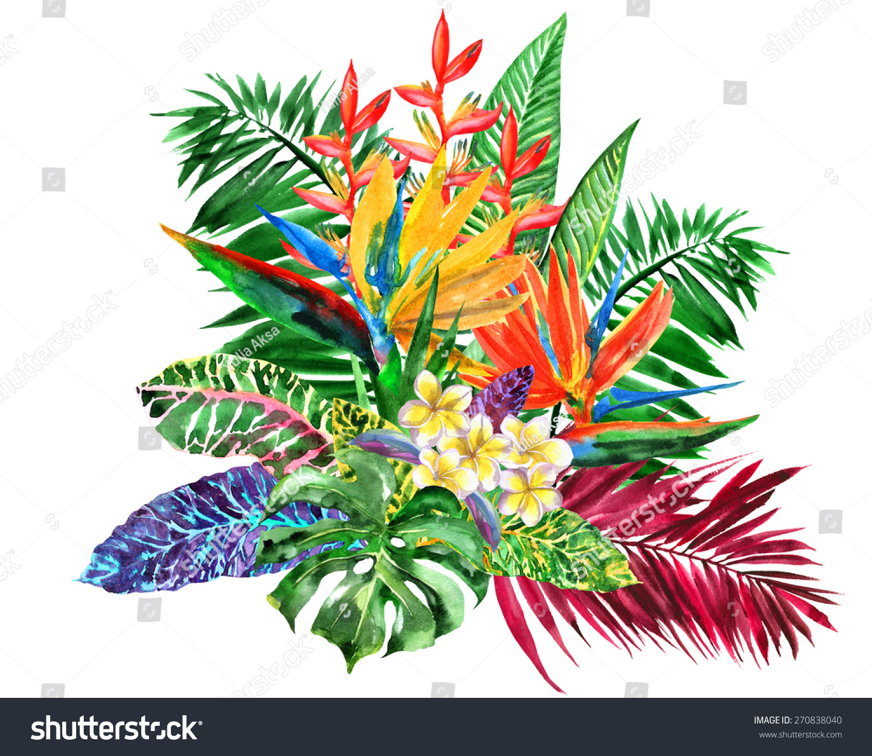 Vivid bunch different tropical flowers plants stock illustration vivid bunch of different tropical flowers and plants bouquet of exotic flowers watercolor illustration izmirmasajfo Images