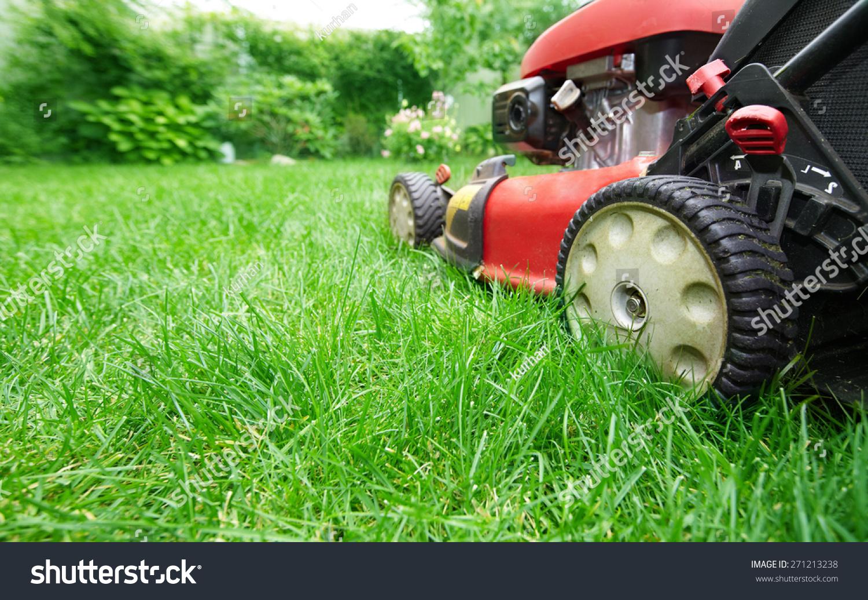 Lawn mower cutting green grass backyardgardening stock for Lawn mower cutting grass