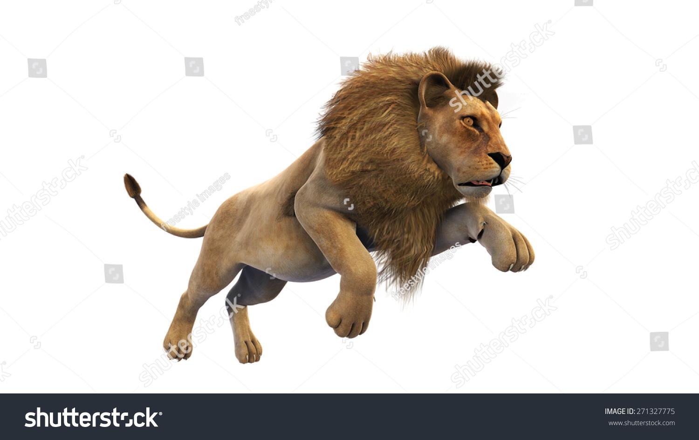 puma animal jumping