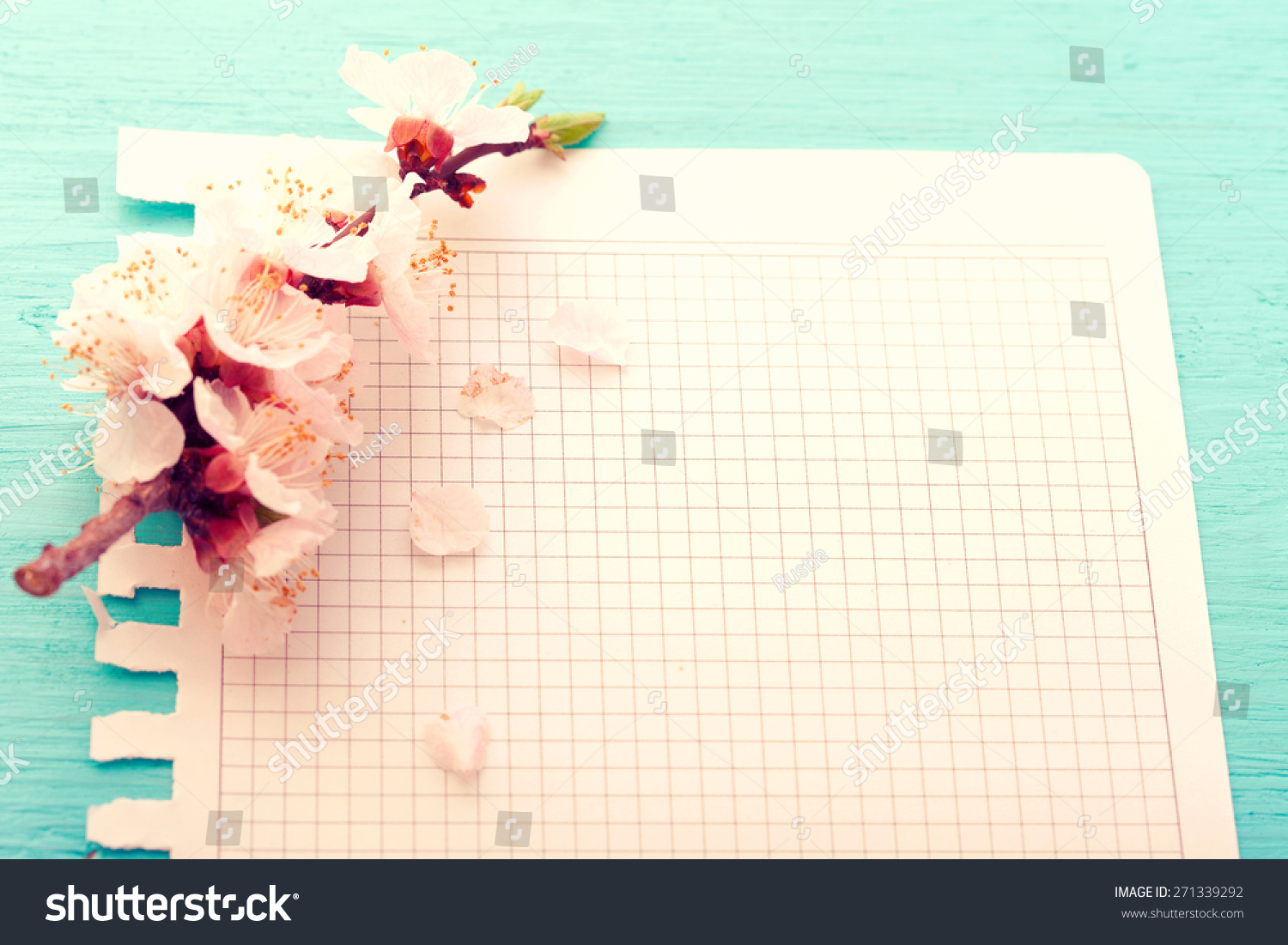 Flowering Branch On Paper Texture Japanese Stock Photo 271339292 ...