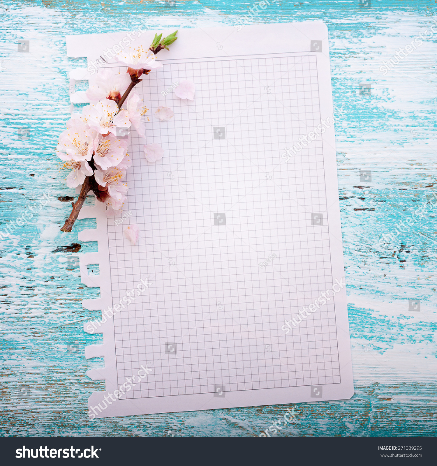 Flowering Branch On Paper Texture Japanese Stock Photo 271339295 ...