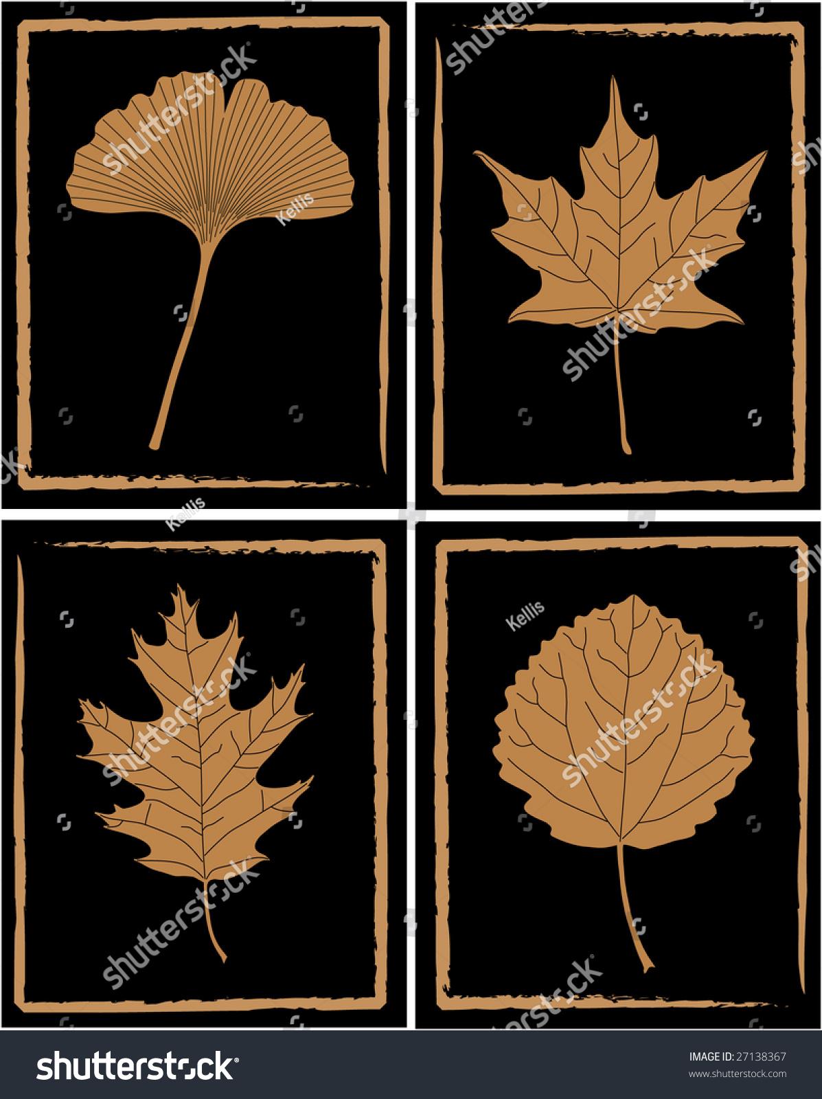 Ginkgo Maple Oak Aspen Leaves Stock Vector 27138367