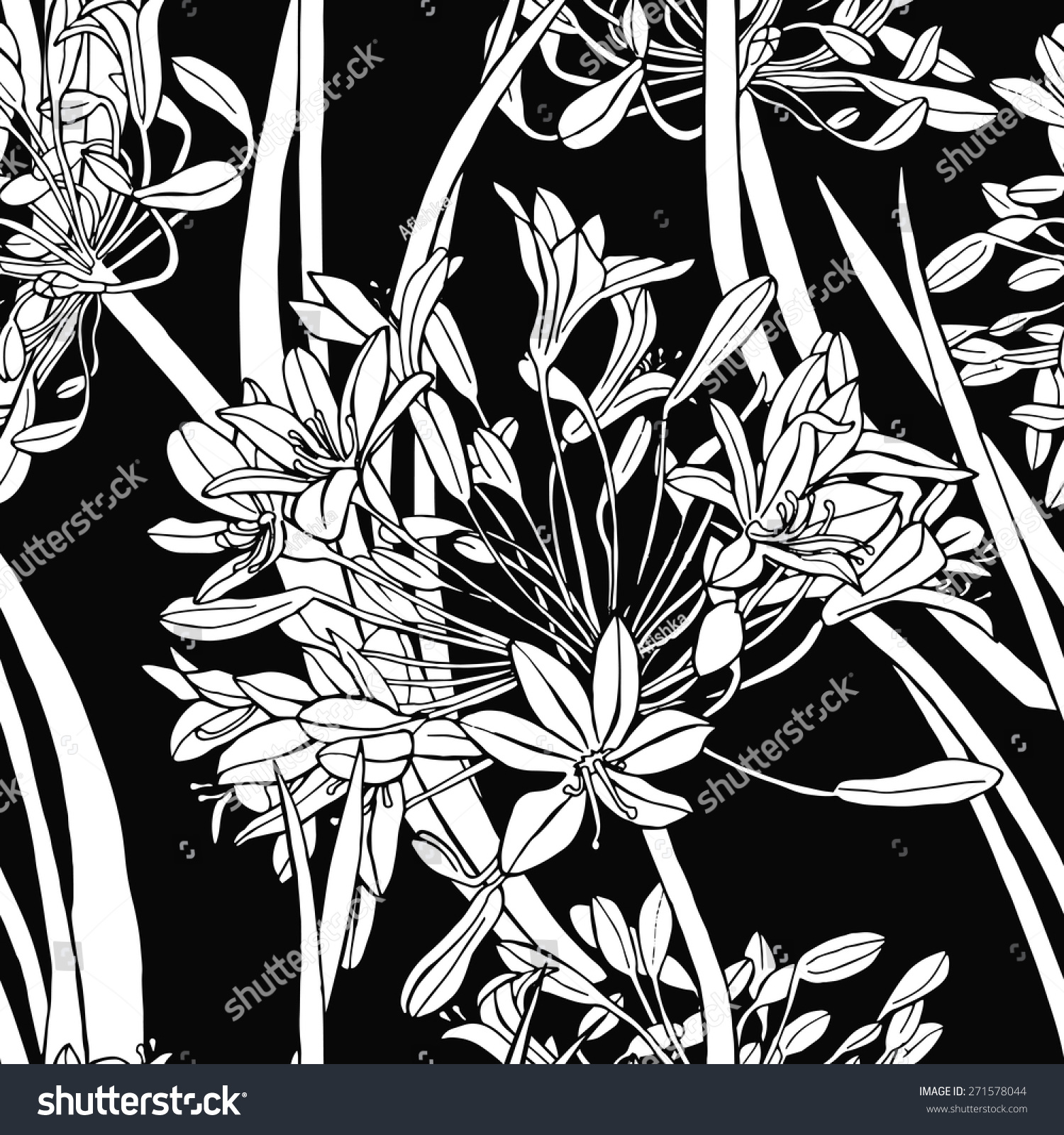 Seamless botanical floral pattern with umbrellas agapanthus vector black and white illustration