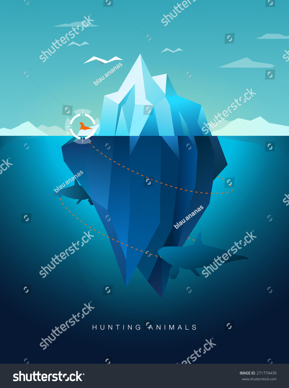 killer whale hunting seal around iceberg stock vector  killer whale hunting seal around iceberg