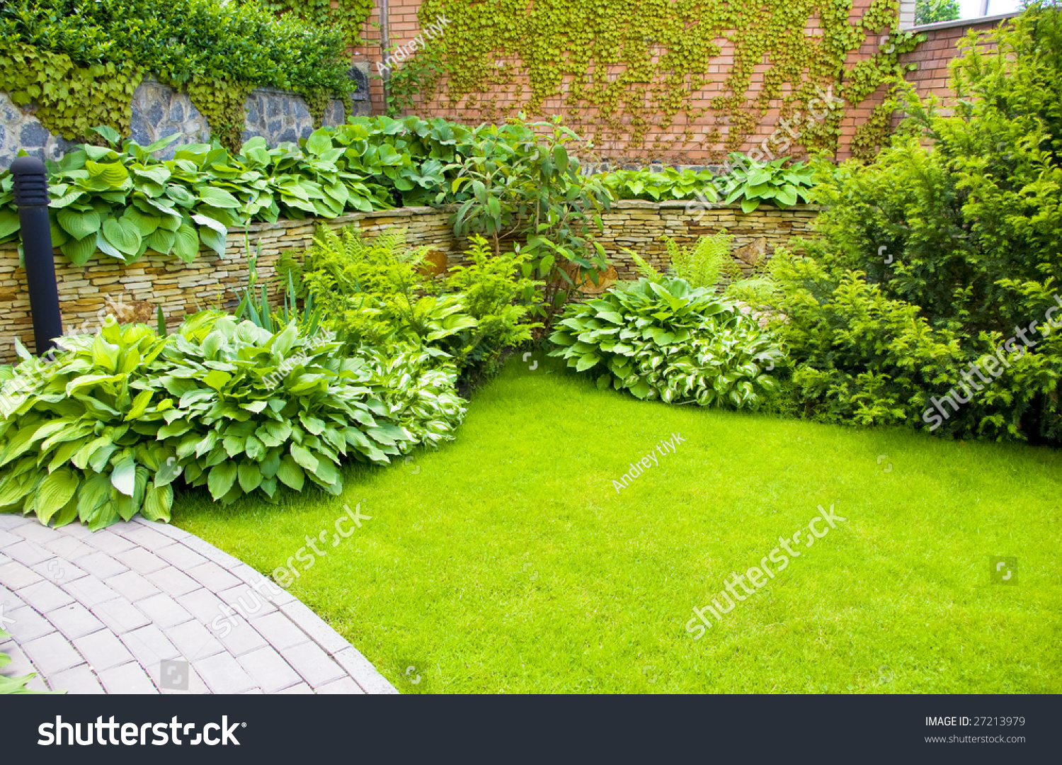 Wall Garden Cipress Bushes Stock Photo 27213979 Shutterstock